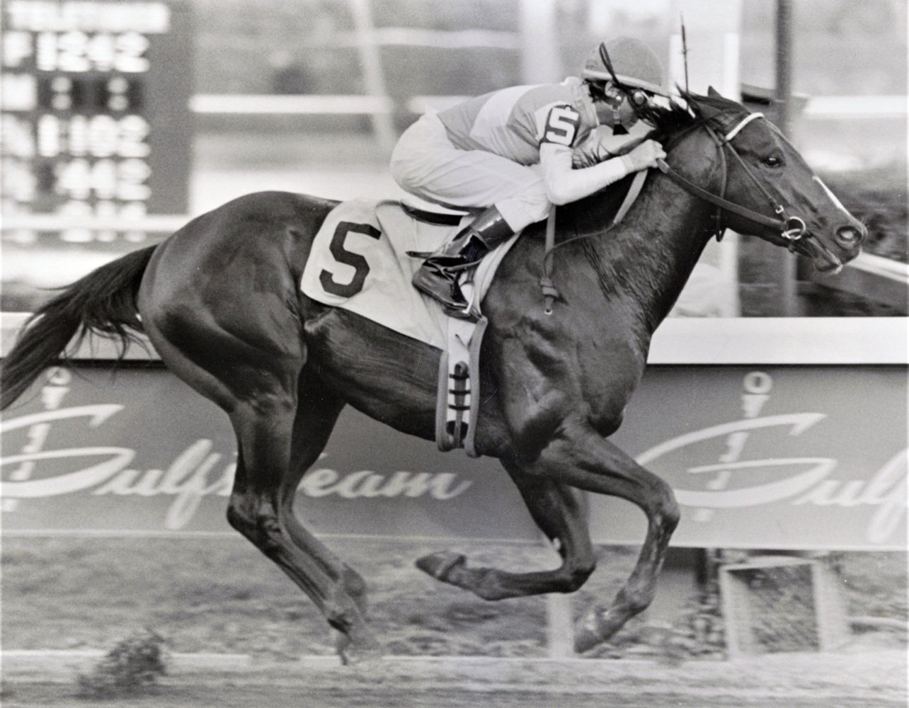 Housebuster (Randy Romero up) winning the 1990 Hutcheson at Gulfstream Park (Jim Raftery Turfotos)