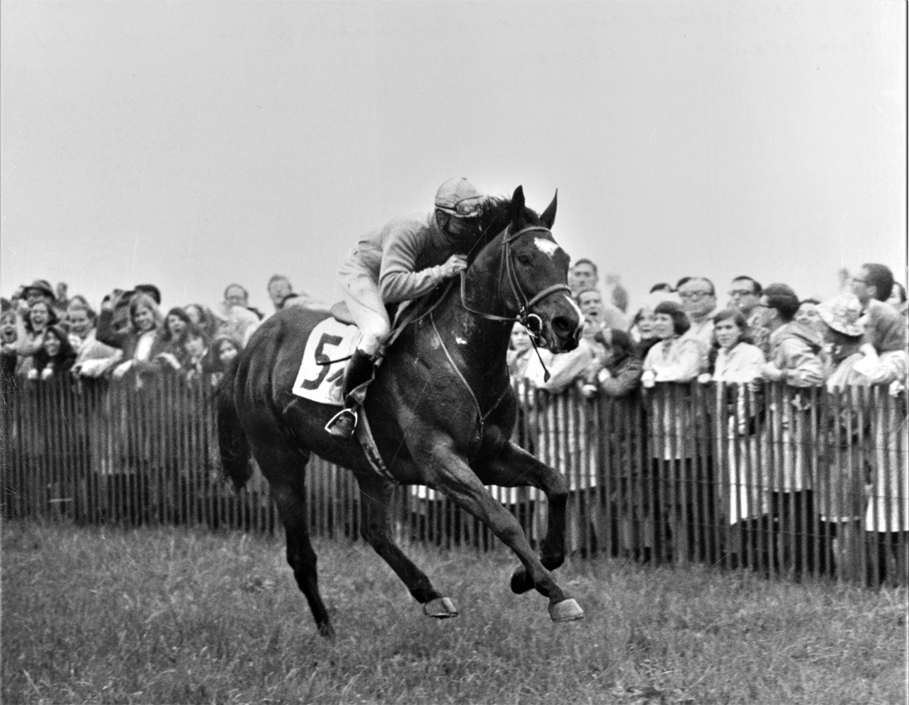 Jay Trump (Tommy Smith up) running down the stretch to win the 1966 Maryland Hunt Cup (Keeneland Library Thoroughbred Times Collection)