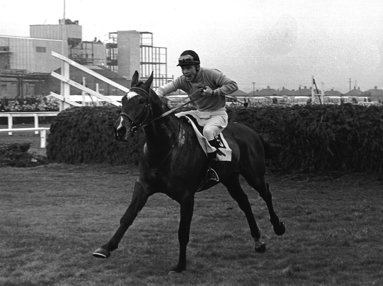 Jay Trump (Tommy Smith up) after completing a jump in the 1965 British Grand National (Winants Bros, Inc./Museum Collection)