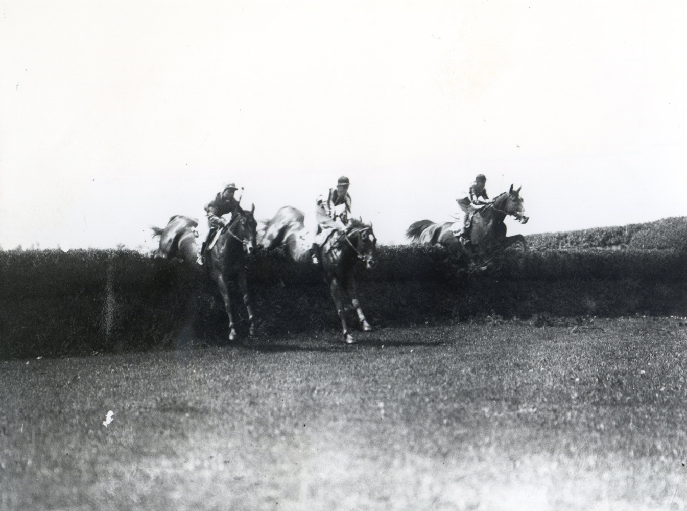 Jolly Roger (far right) taking a jump in the 1928 Charles Appleton Memorial Cup Steeplechase at Belmont Park (Keeneland Library Cook Collection/Museum Collection)