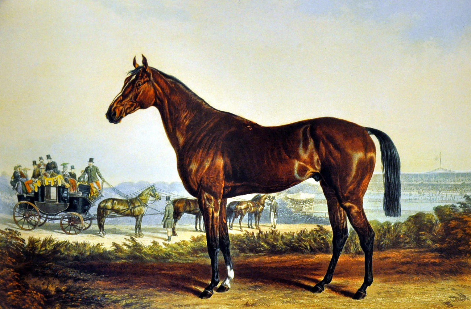 A likeness of Kentucky by artist Edward Troye (Museum Collection)