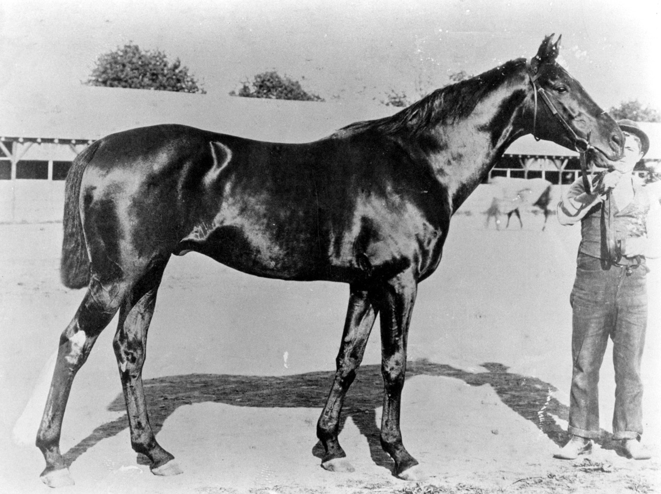 Kingston (Keeneland Library Cook Collection/Museum Collection)