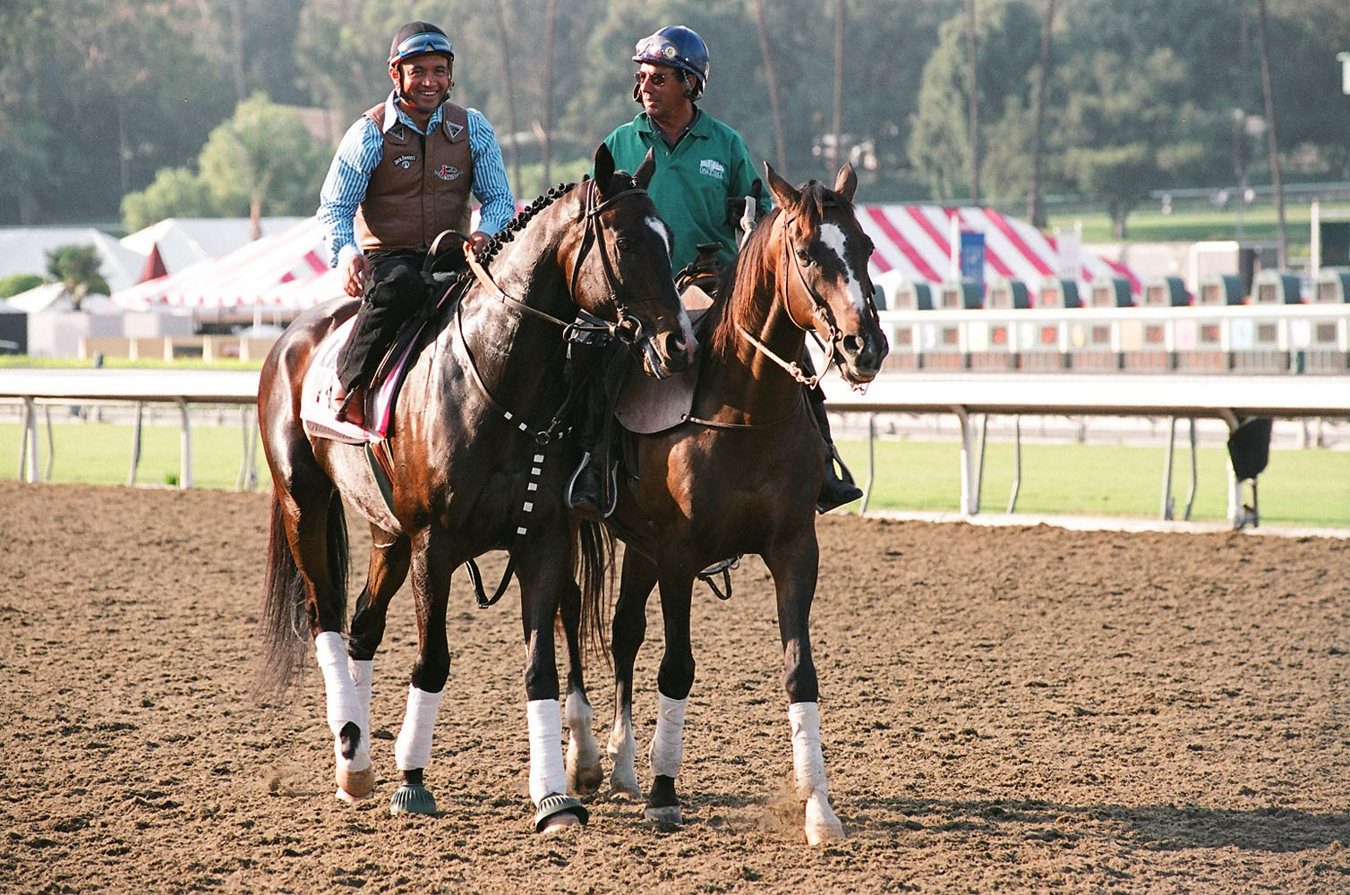 Lava Man leading the post parade for the 2008 California Cup Classic at Oak Tree in celebration of his recent retirement, with regular exercise rider Tony Romero up (Bill Mochon/Museum Collection)
