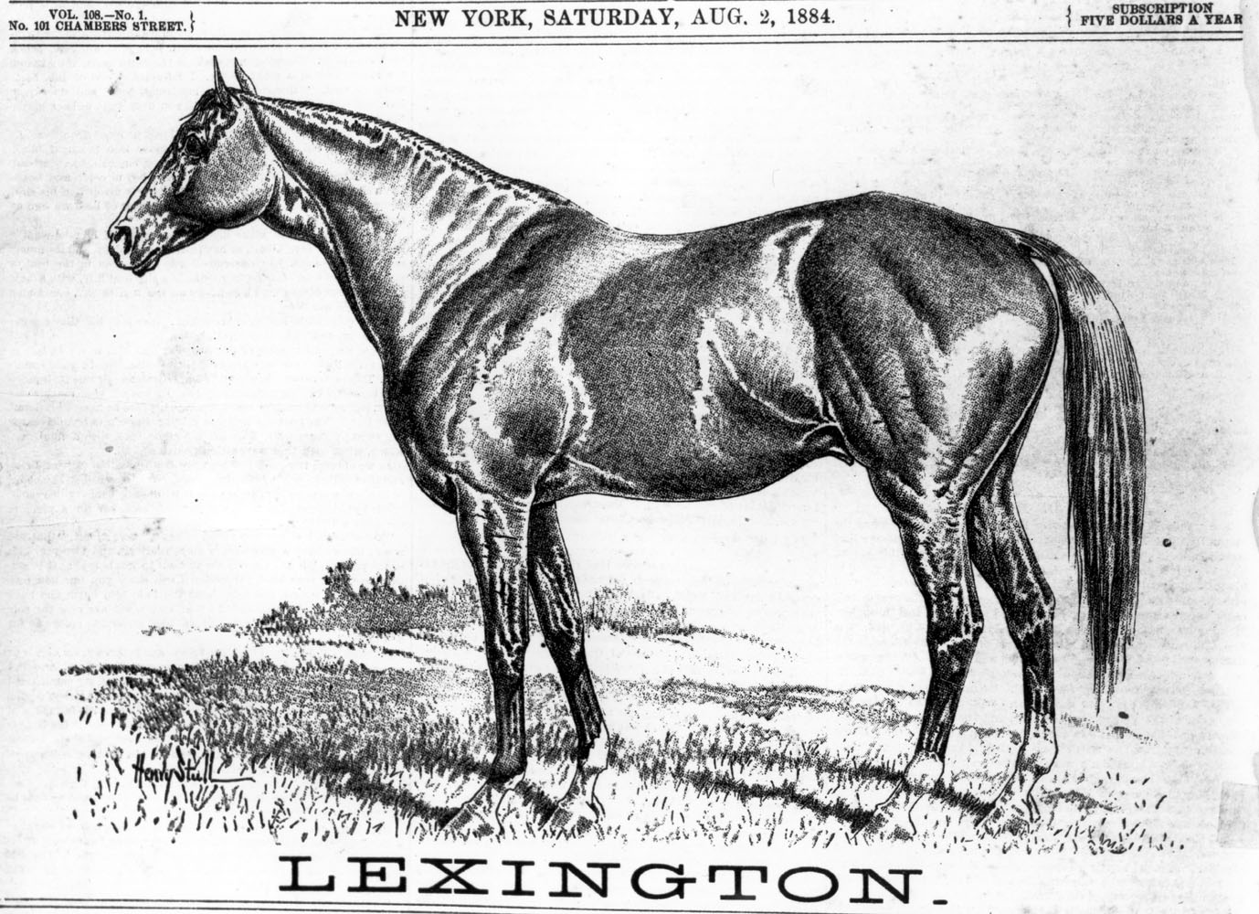 "Illustration of Lexington from ""The Spirit of the Times,"" August 1884 (Keeneland Library Collection/Museum Collection)"
