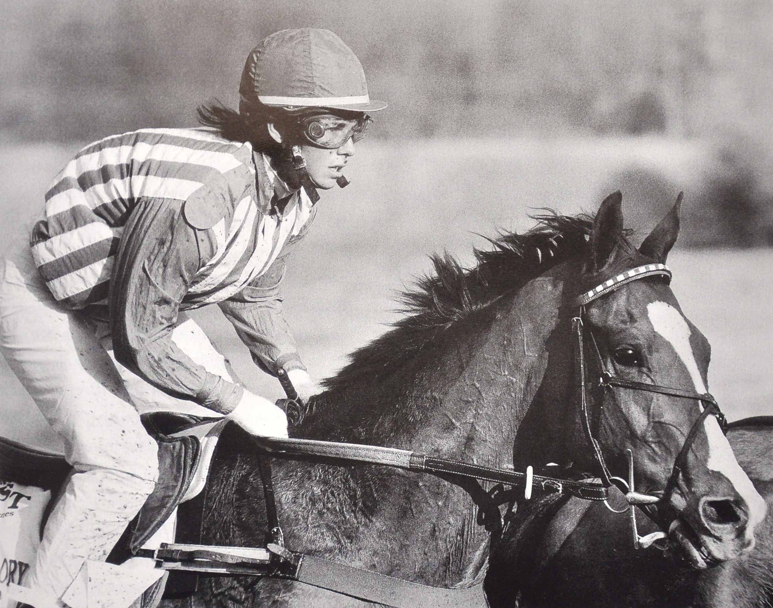 Lonesome Glory, Blythe Miller up (National Steeplechase Association)