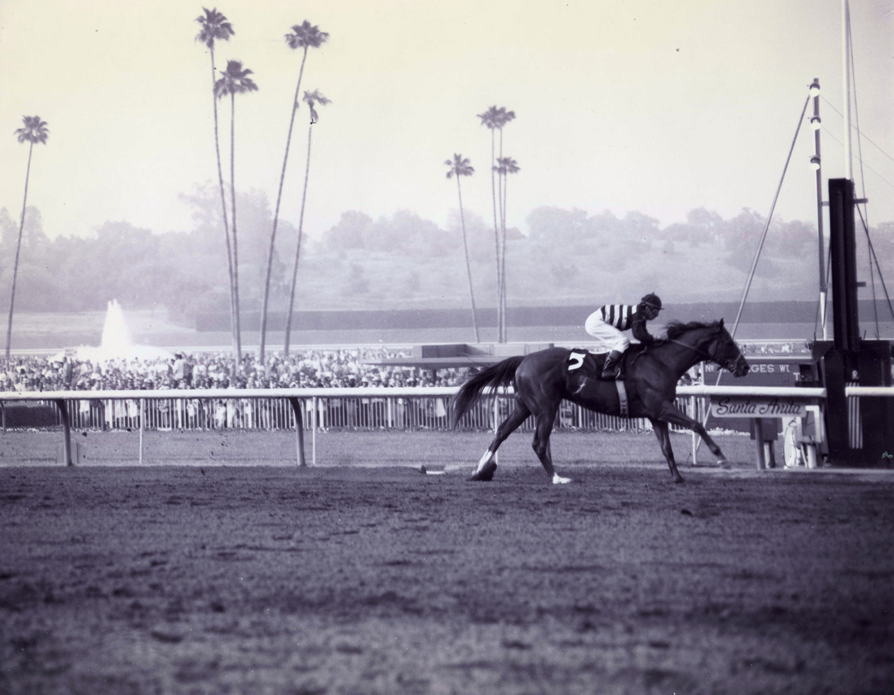 Majestic Prince (Bill Hartack up) winning the 1969 Santa Anita Derby at Santa Anita Park (Santa Anita Photo/Museum Collection)