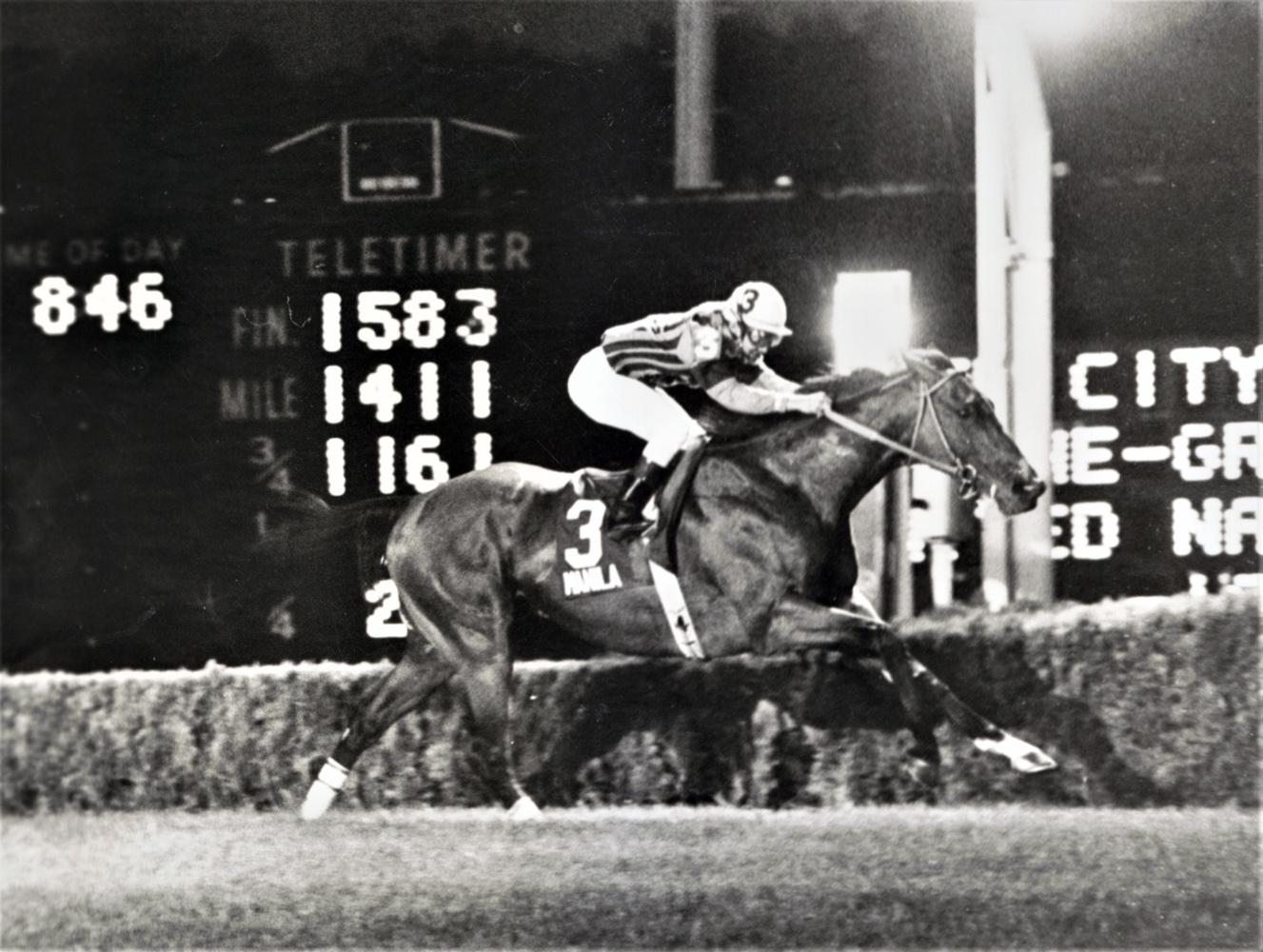 Manila (Jacinto Vasquez up) winning his second consecutve United Nations Handicap at Atlantic City Race Course, July 1987 (Jim Raftery Turfotos)