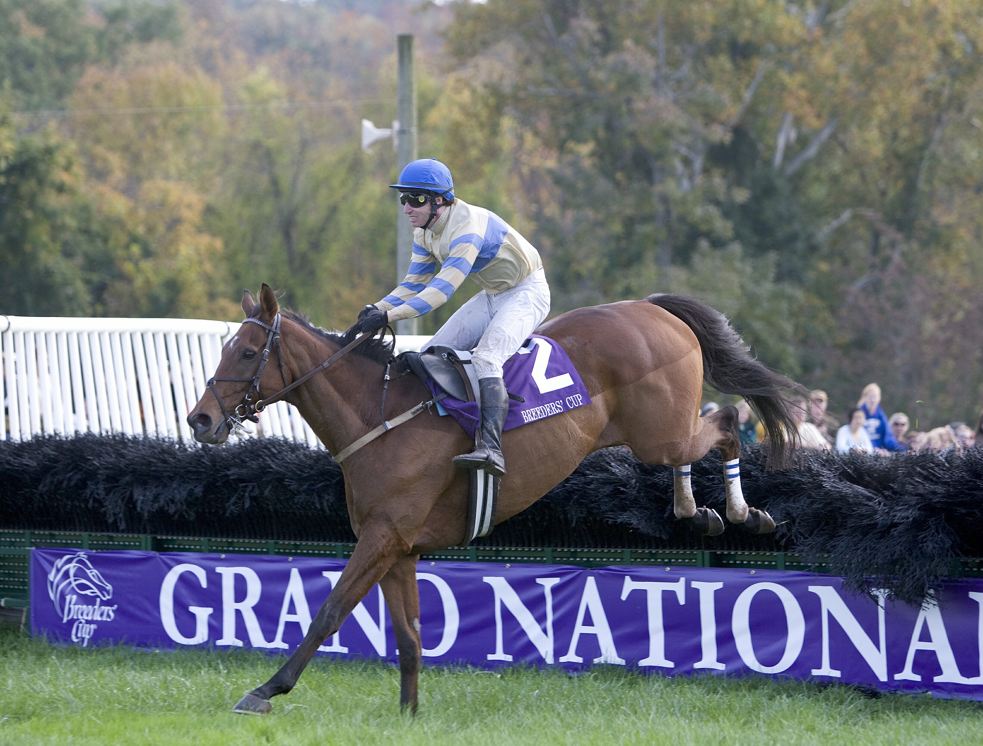 McDynamo (Jody Petty up) clears the last jump on his way to win the 2007 Grand National at Far Hills (Tod Marks)