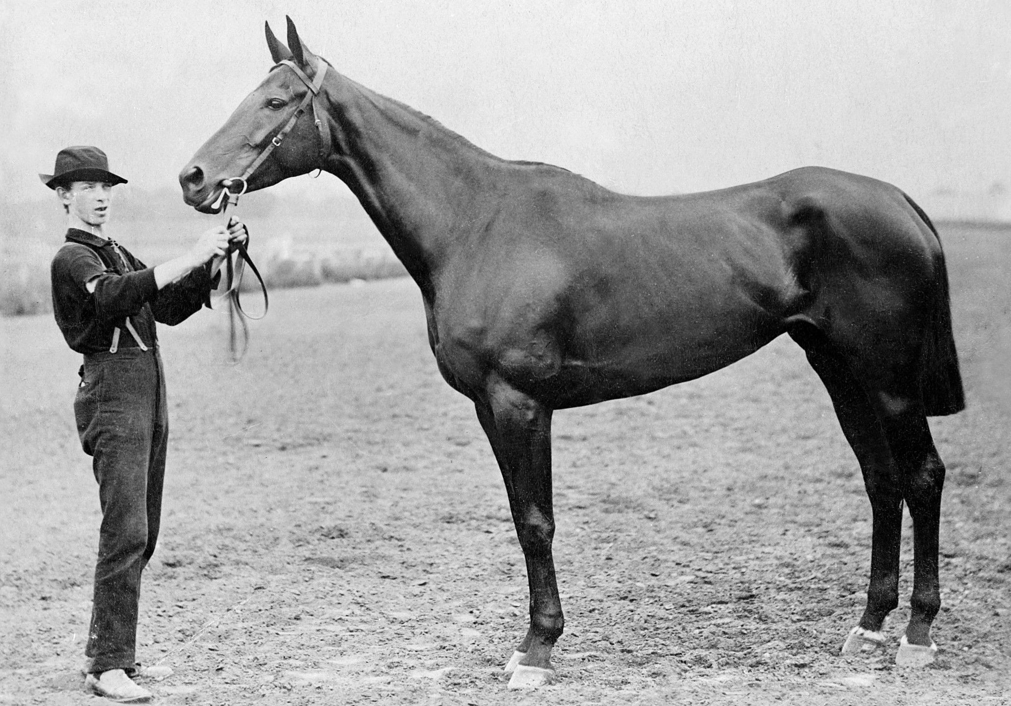 Miss Woodford (Keeneland Library Cook Collection/Museum Collection)