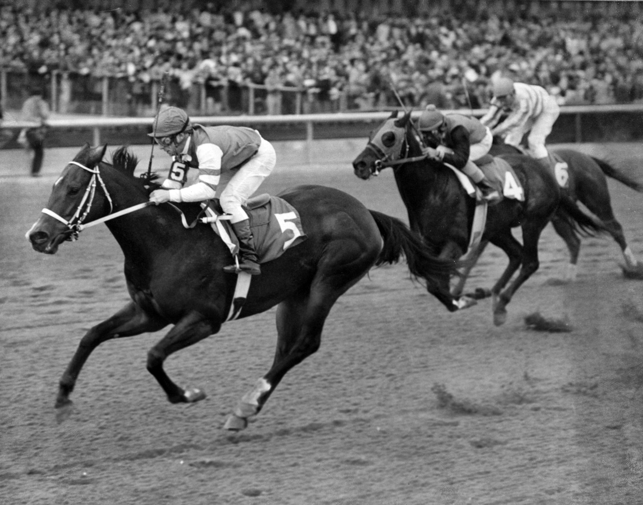 My Juliet (Tony Black up) defeating Kentucky Derby winner Bold Forbes in the 1976 Vosburgh Handicap at Aqueduct (Bob Coglianese)