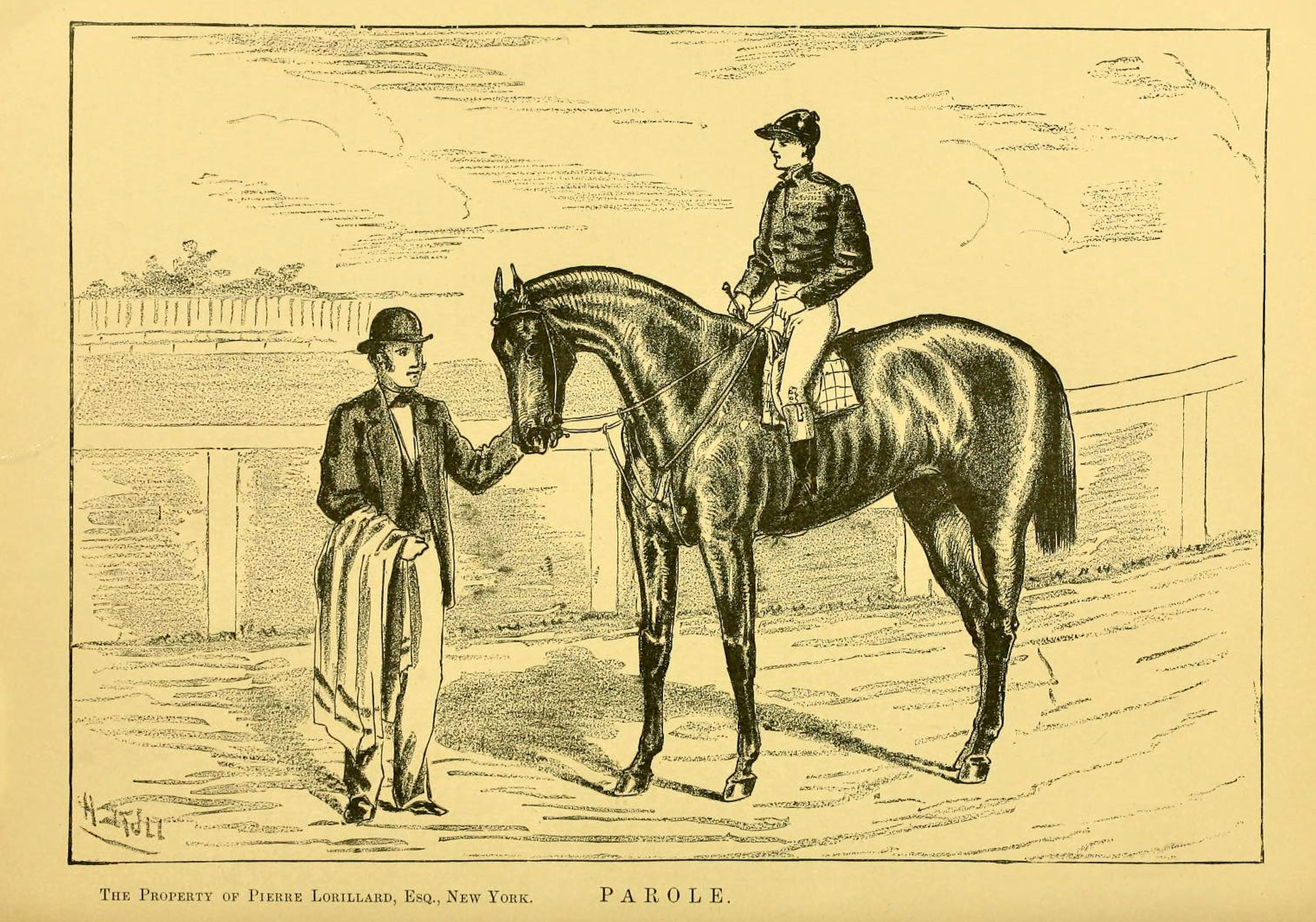 "Illustration of Parole from ""Famous American Racehorses,"" 1877 (Museum Collection)"