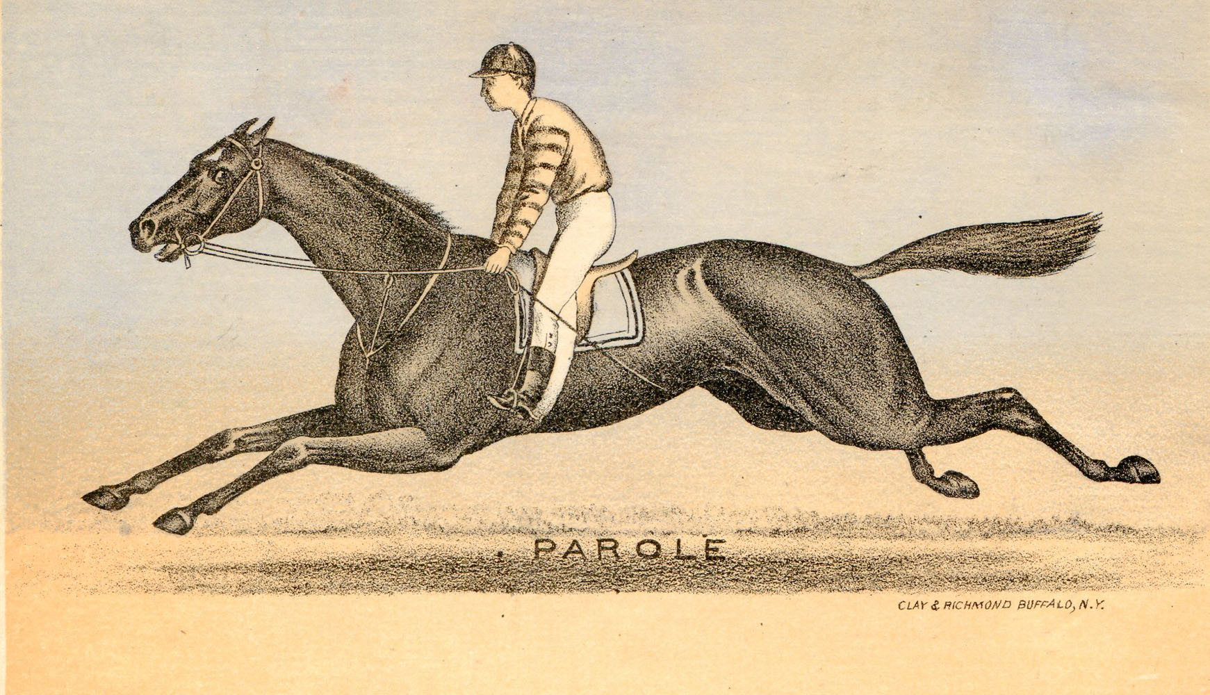 A print of Parole by Clay & Richmond (Museum Collection)