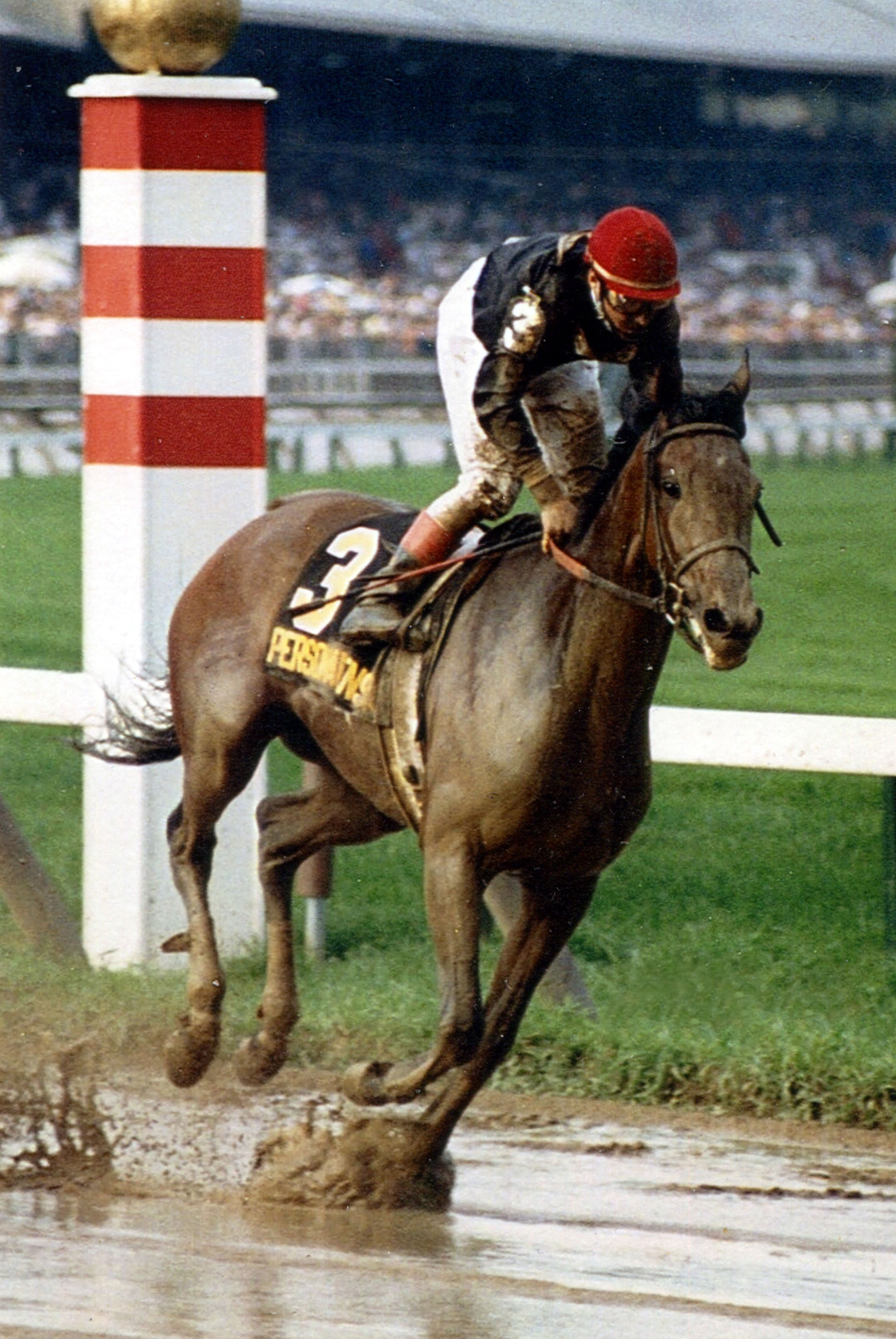 Personal Ensign (Randy Romero up) racing in the 1988 Whitney Handicap at Saratoga (Mike Pender/Museum Collection)