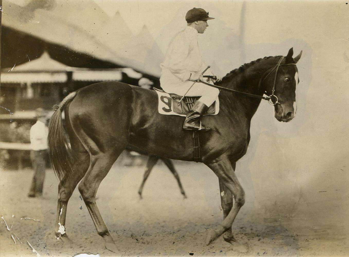Regret at Saratoga with Joe Notter up (C. C. Cook/Museum Collection)