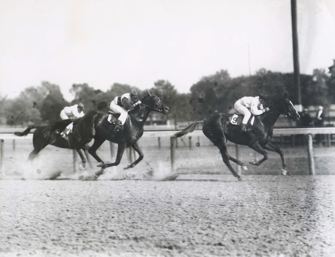 Regret (Joe Notter up) winning the 1914 Sanford Memorial Stakes at Saratoga (Keeneland Library Cook Collection/Museum Collection)