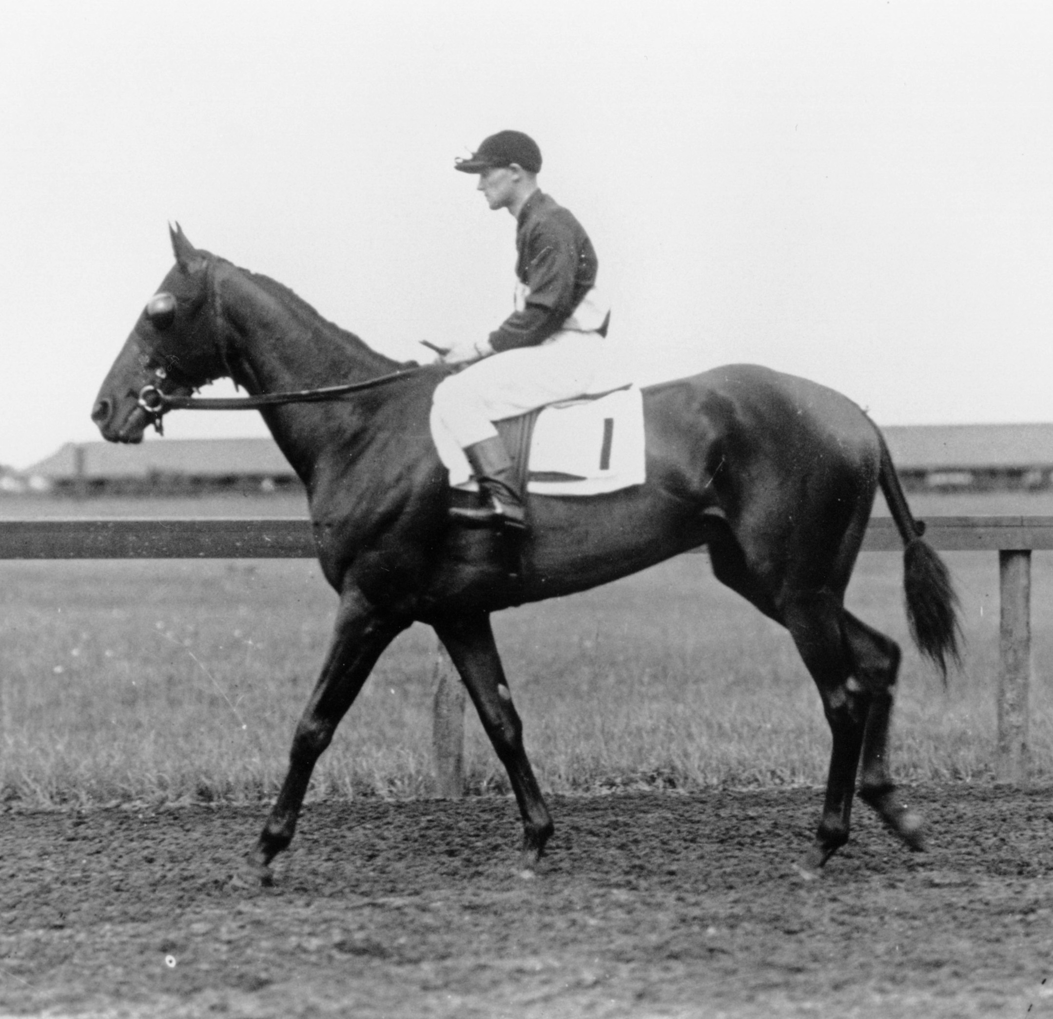 Roamer with James Butwell up (Keeneland Library Cook Collection/Museum Collection)