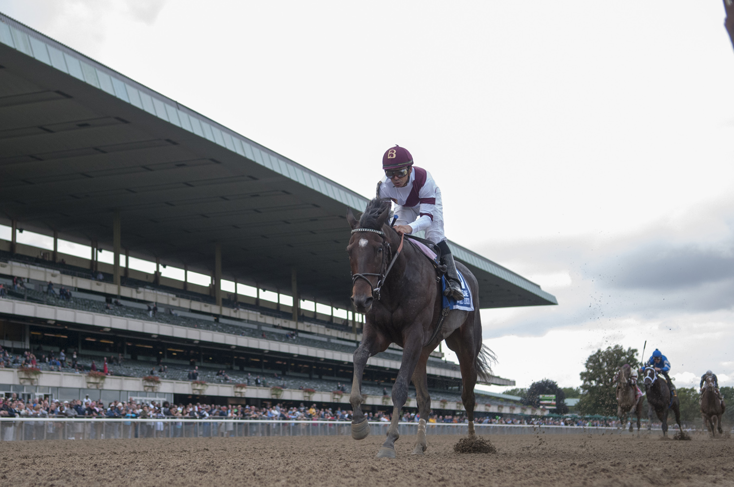 Royal Delta (Mike Smith up) digging in to win the 2012 Beldame Invitational at Belmont Park by nine-and-a-half lengths (NYRA)