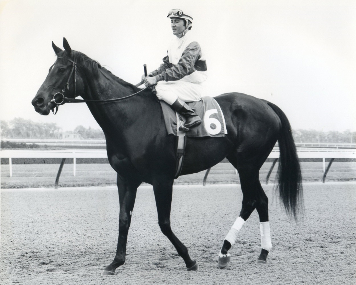 Ruffian and Jacinto Vasquez (Museum Collection)