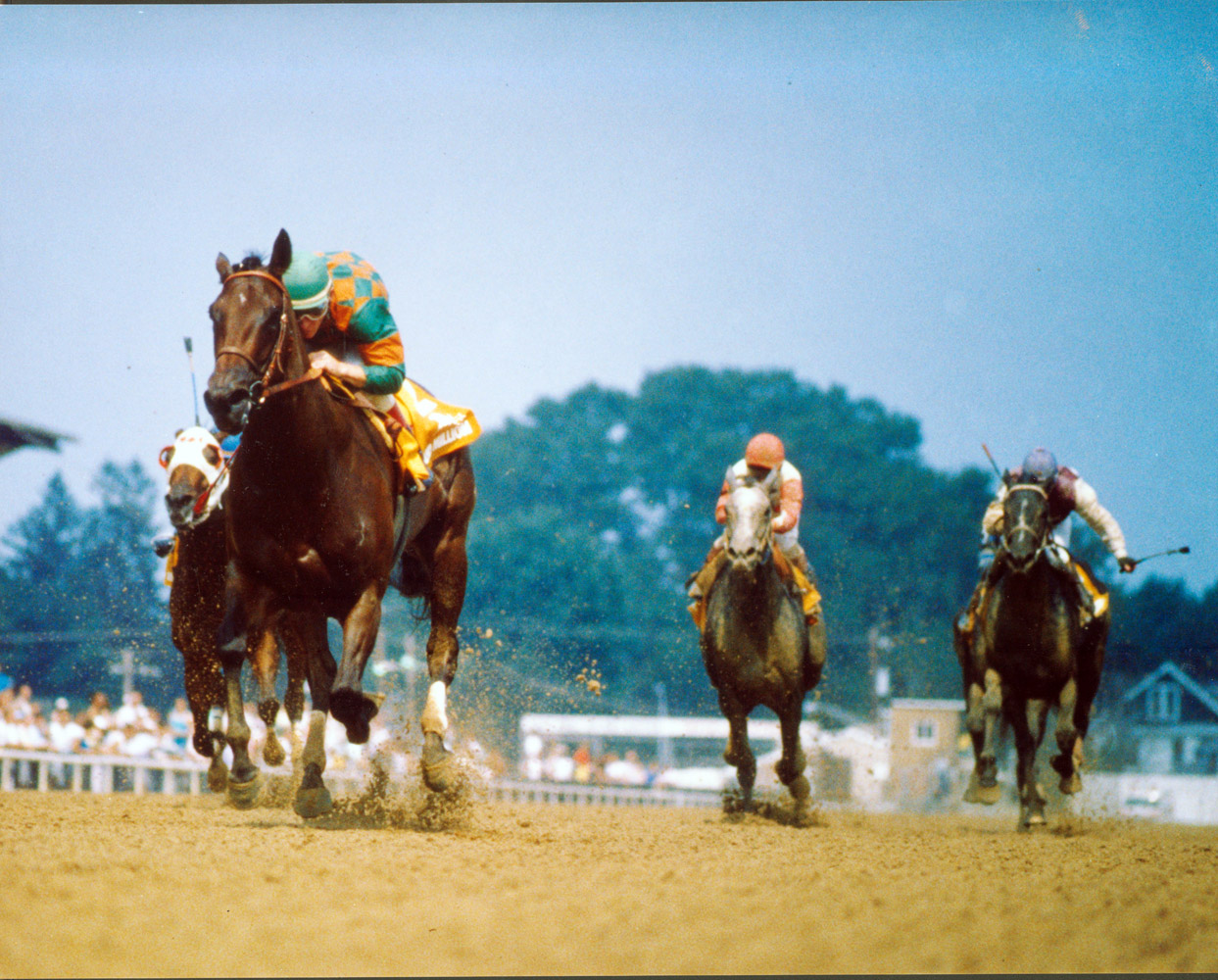 Safely Kept won the Genuine Risk Handicap, Maryland Million Distaff Handicap, and the Garden State Stakes Handicap three times each in her career (NYRA)