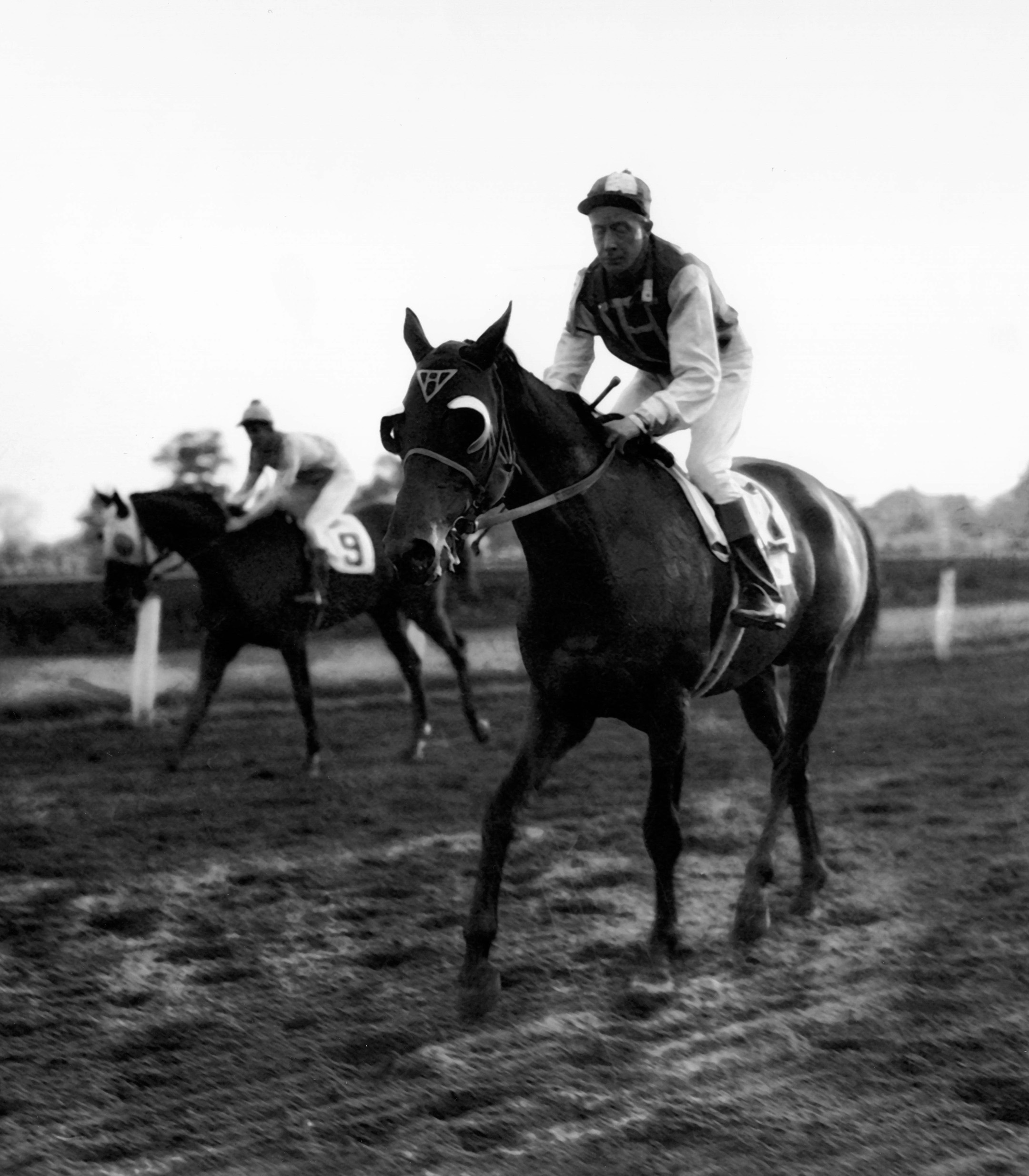 Seabiscuit with Red Pollard up after winning the 1937 Continental Handicap at Jamaica (Museum Collection)