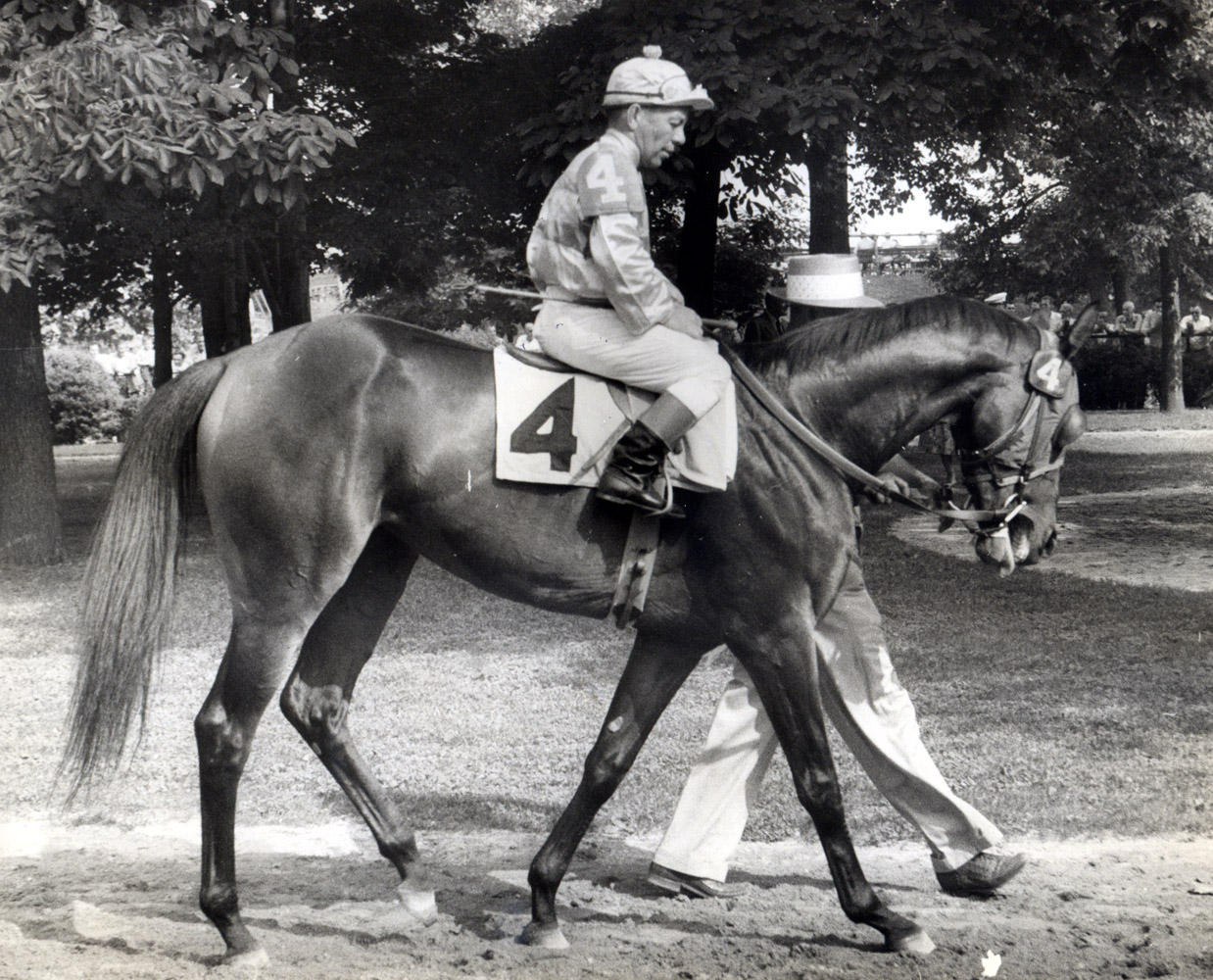Searching (Conn McCreary up) in the paddock at Delaware Park, 1956 (Delaware Park Photo/Museum Collection)