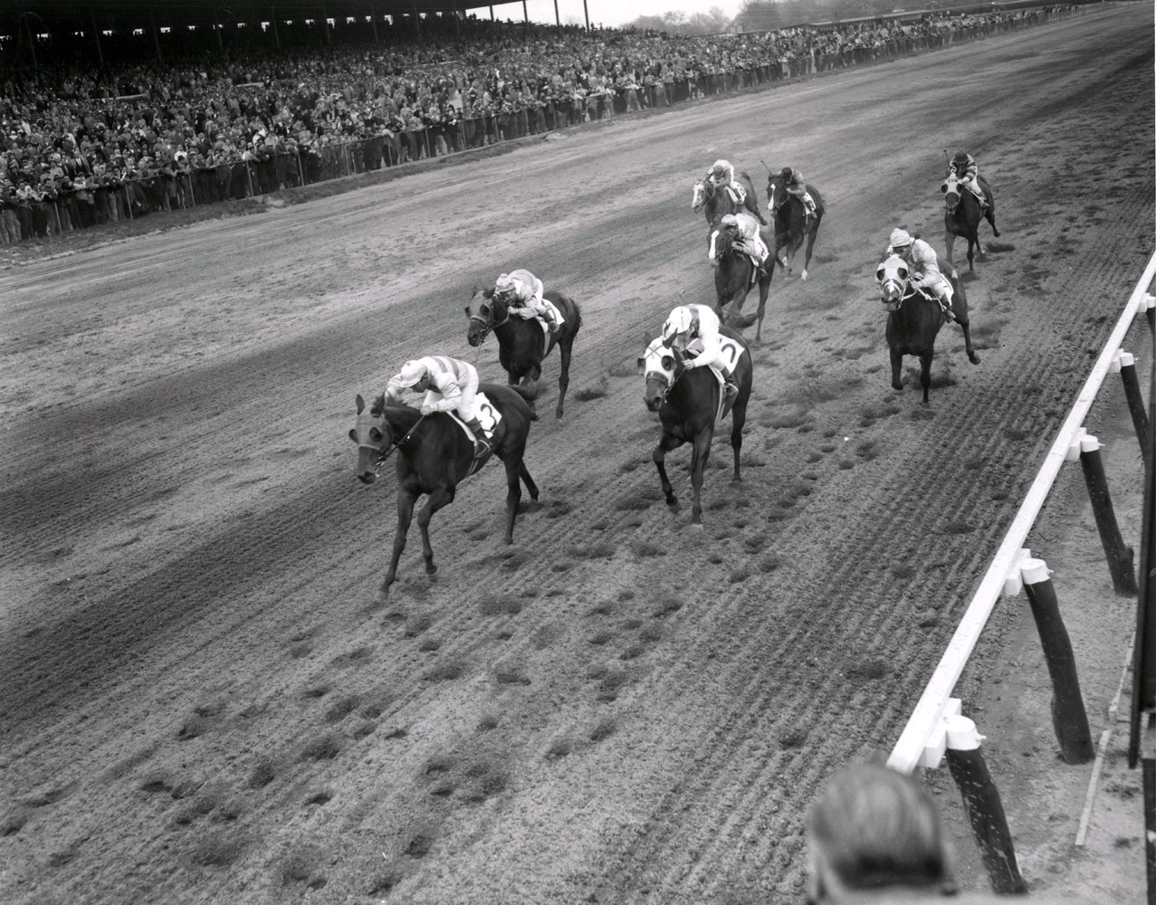 Searching (Conn McCreary up) racing to victory in the 1956 Correction at Jamaica (Keeneland Library Morgan Collection/Museum Collection)