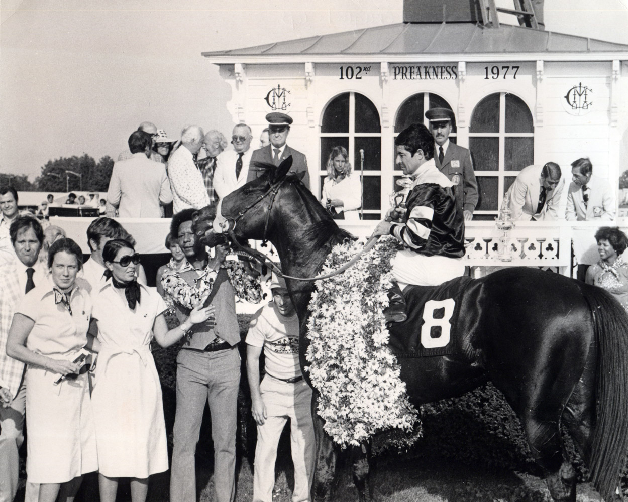 Seattle Slew (Jean Cruguet up) in the winner's circle for the 1977 Preakness (Museum Collection)