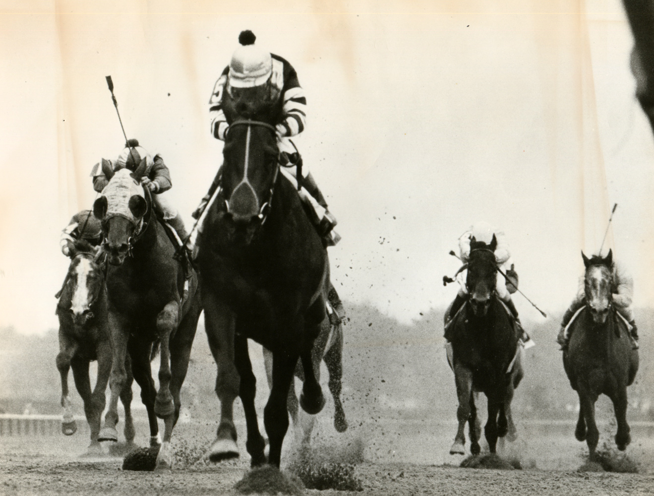Seattle Slew (Jean Cruguet up) winning the 1977 Wood Memorial at Aqueduct, his final prep before the Triple Crown series (NYRA/Bob Coglianese /Museum Collection)