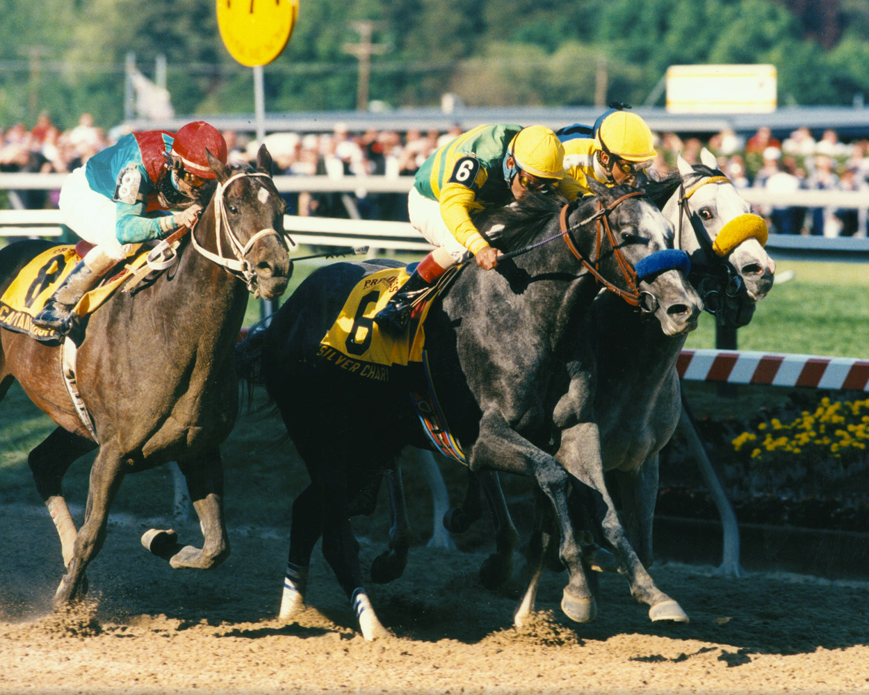 Silver Charm (Gary Stevens up) closing in to win the 1997 Preakness by a head (Skip Dickstein)