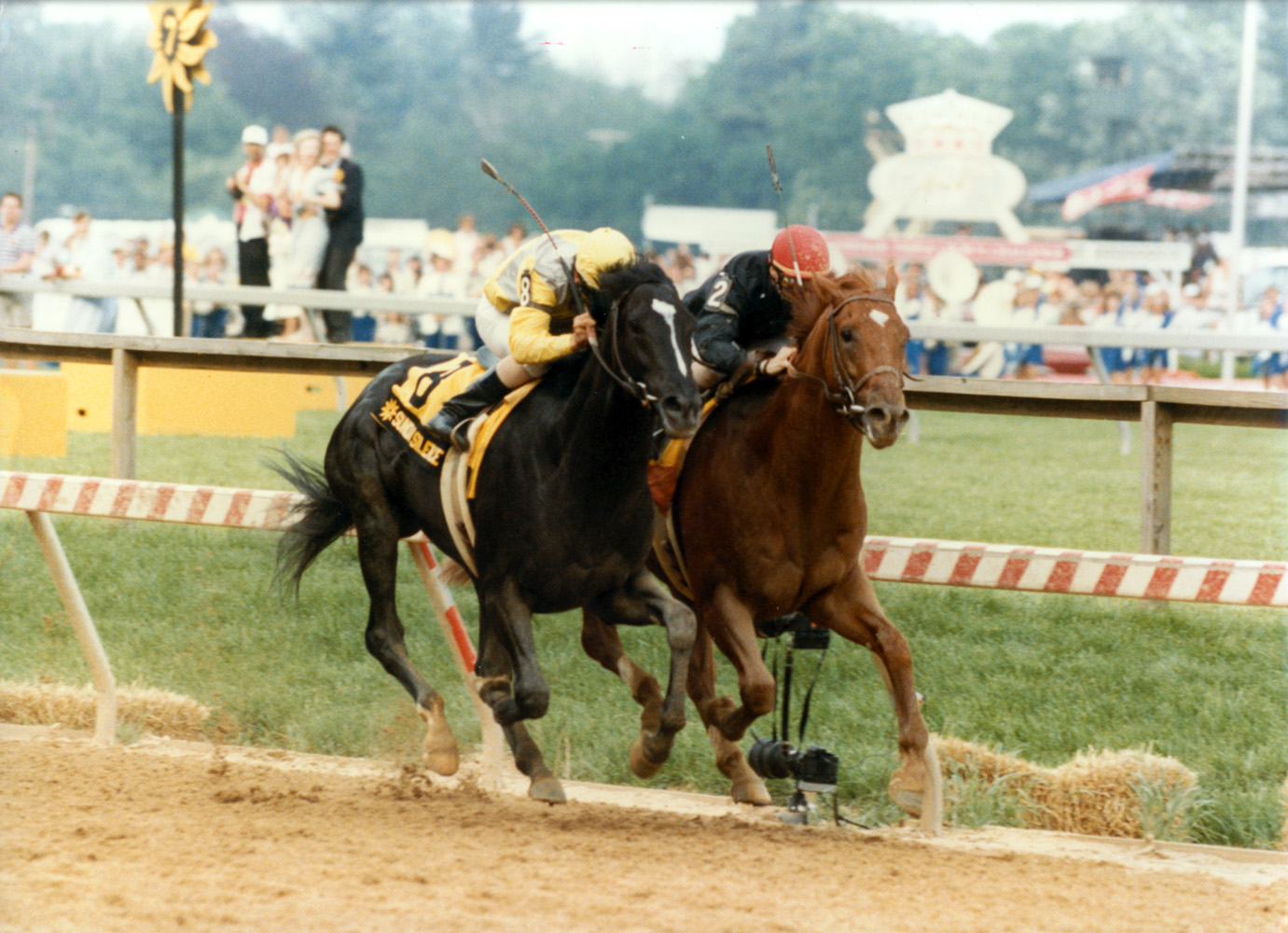 Sunday Silence (Patrick Valenzuela up) dueling fellow Hall of Famer Easy Goer (Pat Day up) down the stretch in the 1989 Preakness (Skip Dickstein/Museum Collection)