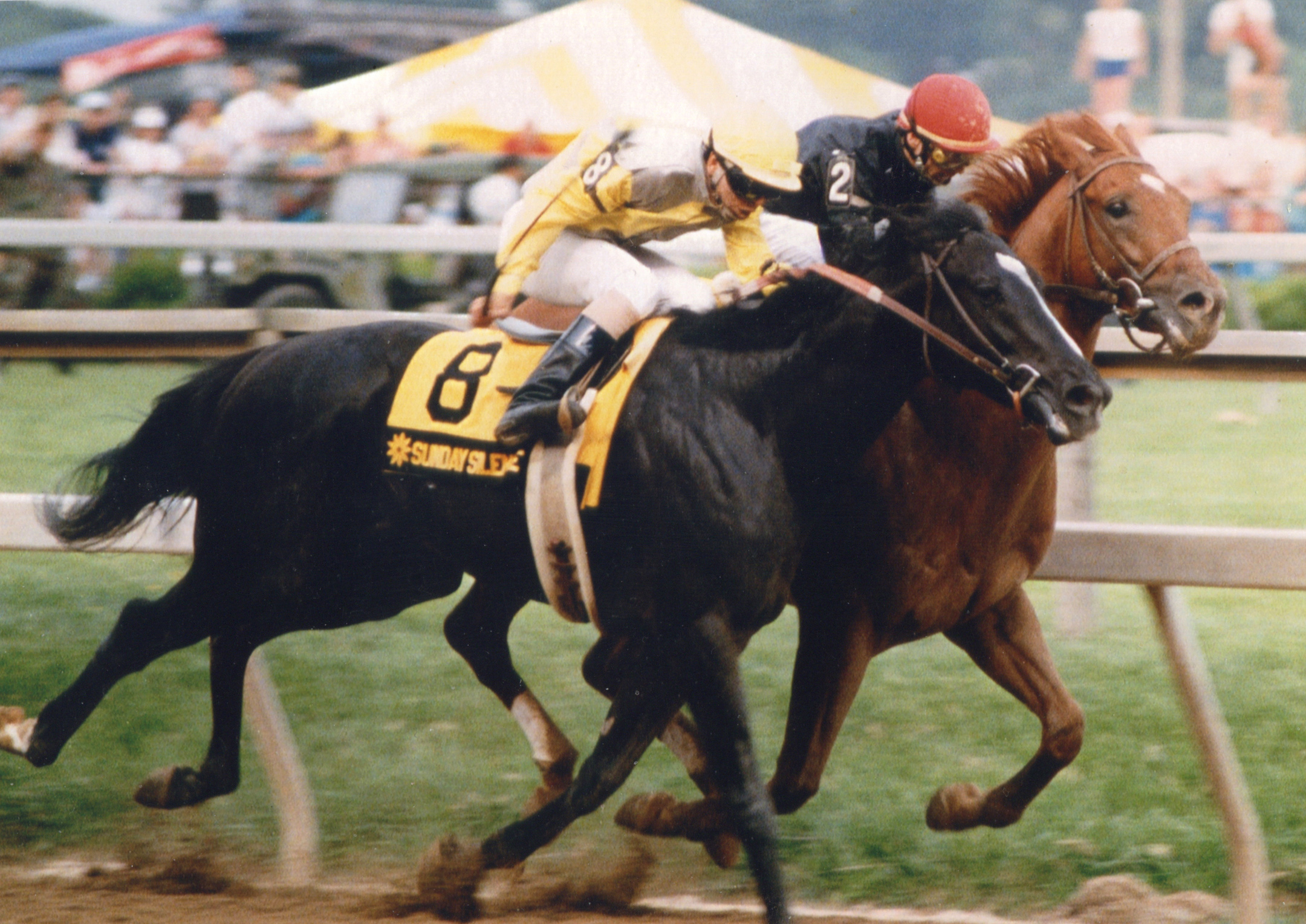 Sunday Silence (Patrick Valenzuela up) edges out fellow Hall of Famer Easy Goer (Pat Day up) in the 1989 Preakness Stakes (Mike Pender/Museum Collection)