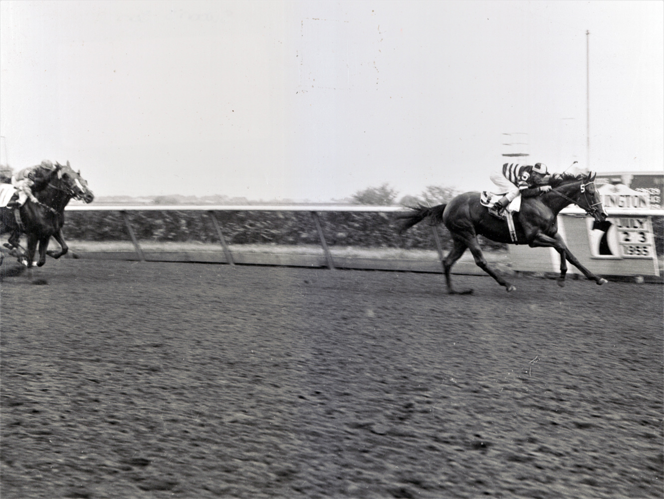 Swoon's Son wins the 1955 Futurity at Arlington Park (Keeneland Library Thoroughbred Times Collection)