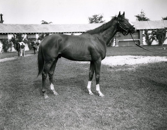 Sword Dancer at Belmont Park in 1959 (Keeneland Library Morgan Collection/Museum Collection)