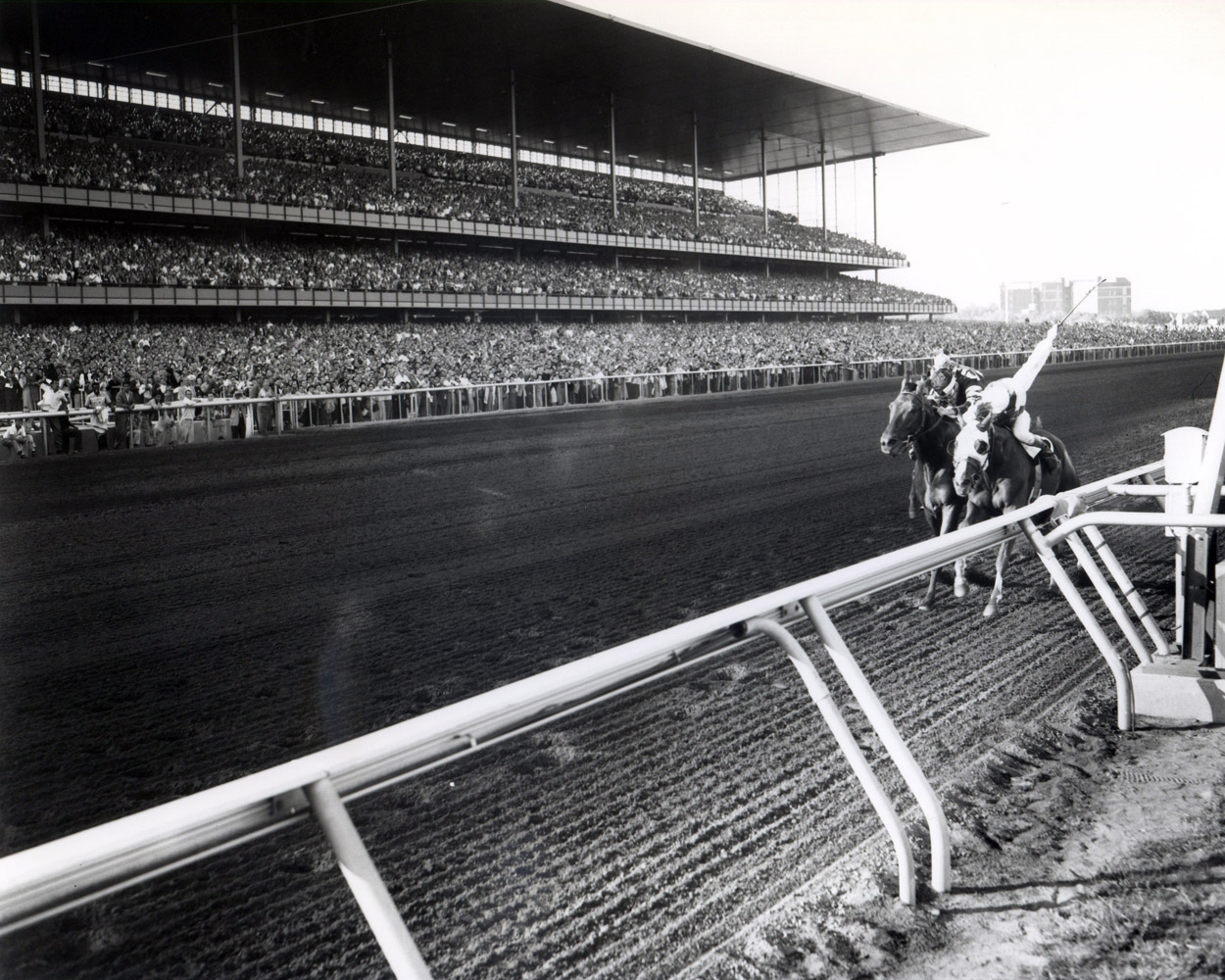 Sword Dancer (Eddie Arcaro up) dueling down the stretch in the 1959 Woodward at Aqueduct (Keeneland Library Morgan Collection/Museum Collection)