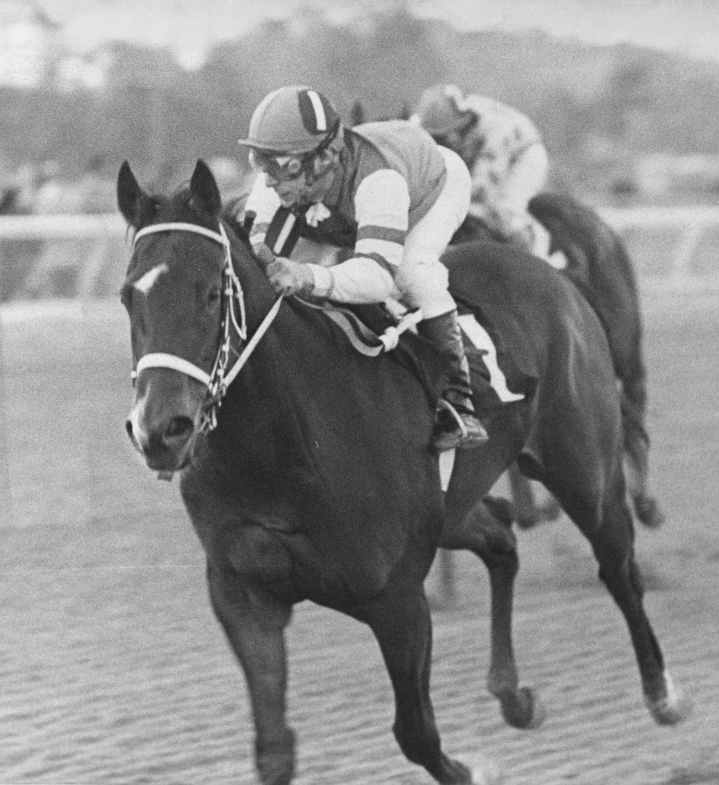My Juliet, 1976 Doylestown Handicap, Anthony Black up (Keeneland Library Thoroughbred Times Collection)