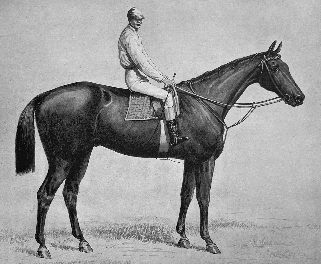 """Illustration of Ten Broeck from """"Racing in America, 1866-1921"""" (Museum Collection)"""