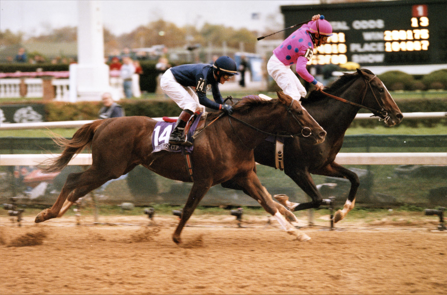 Tiznow (Chris McCarron up) winning the 2000 Breeders' Cup Classic at Churchill Downs by a neck over Giant's Causeway (Keeneland Library Thoroughbred Times Collection)