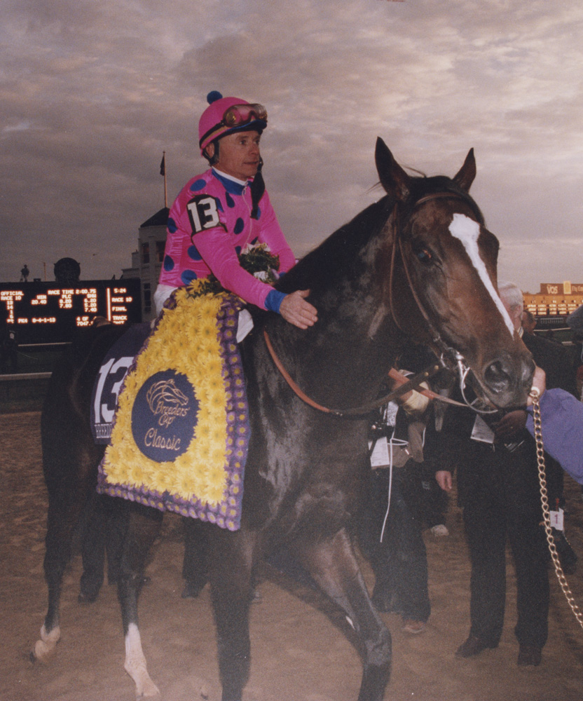 Tiznow (Chris McCarron up) after winning the 2000 Breeders' Cup Classic (Keeneland Library Thoroughbred Times Collection)