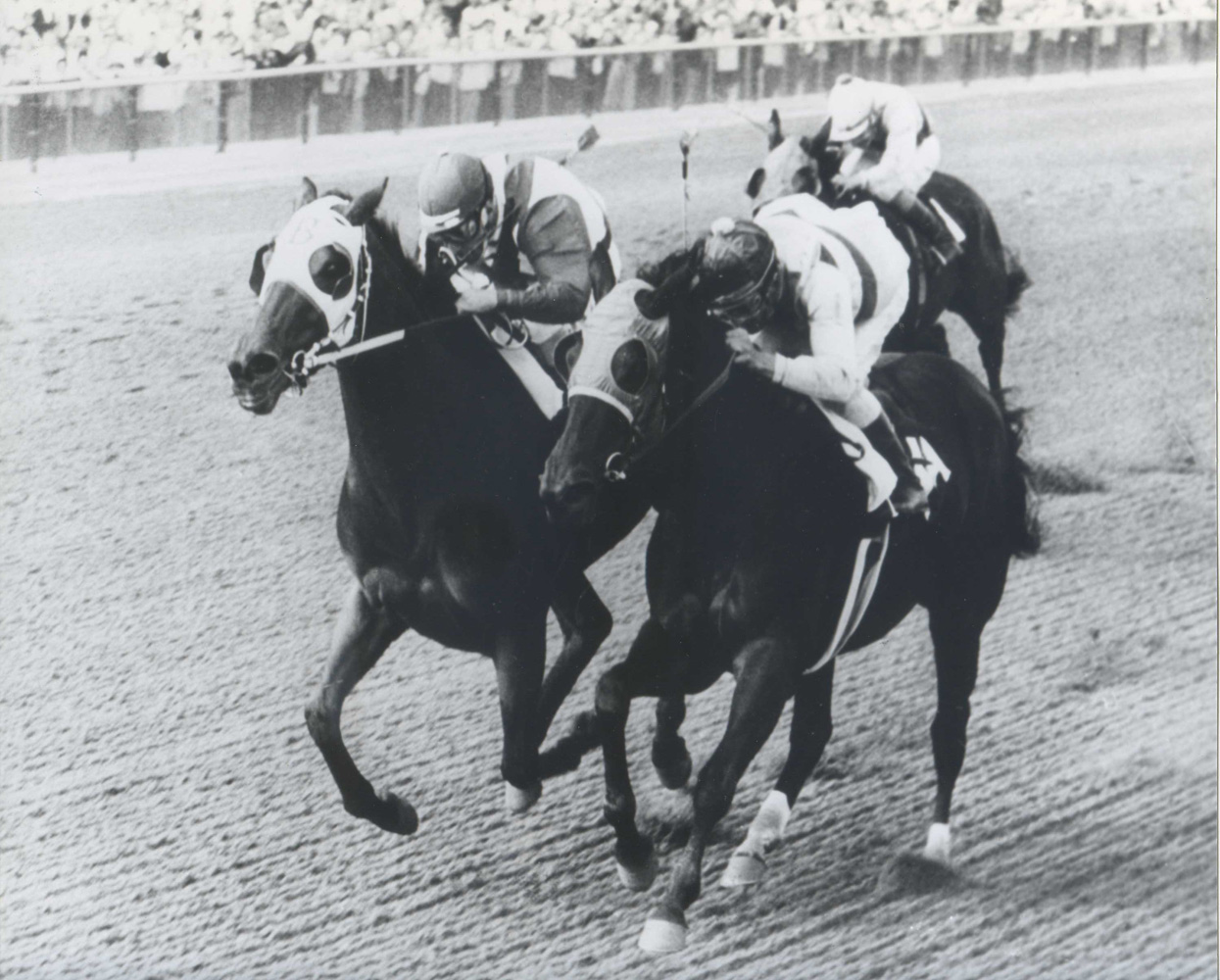 Tosmah with Sam Boulmetis up (on left) battles Affectionately to win the 1965 Maskette Handicap at Aqueduct by a nose (Bob Coglianese/Museum Collection)