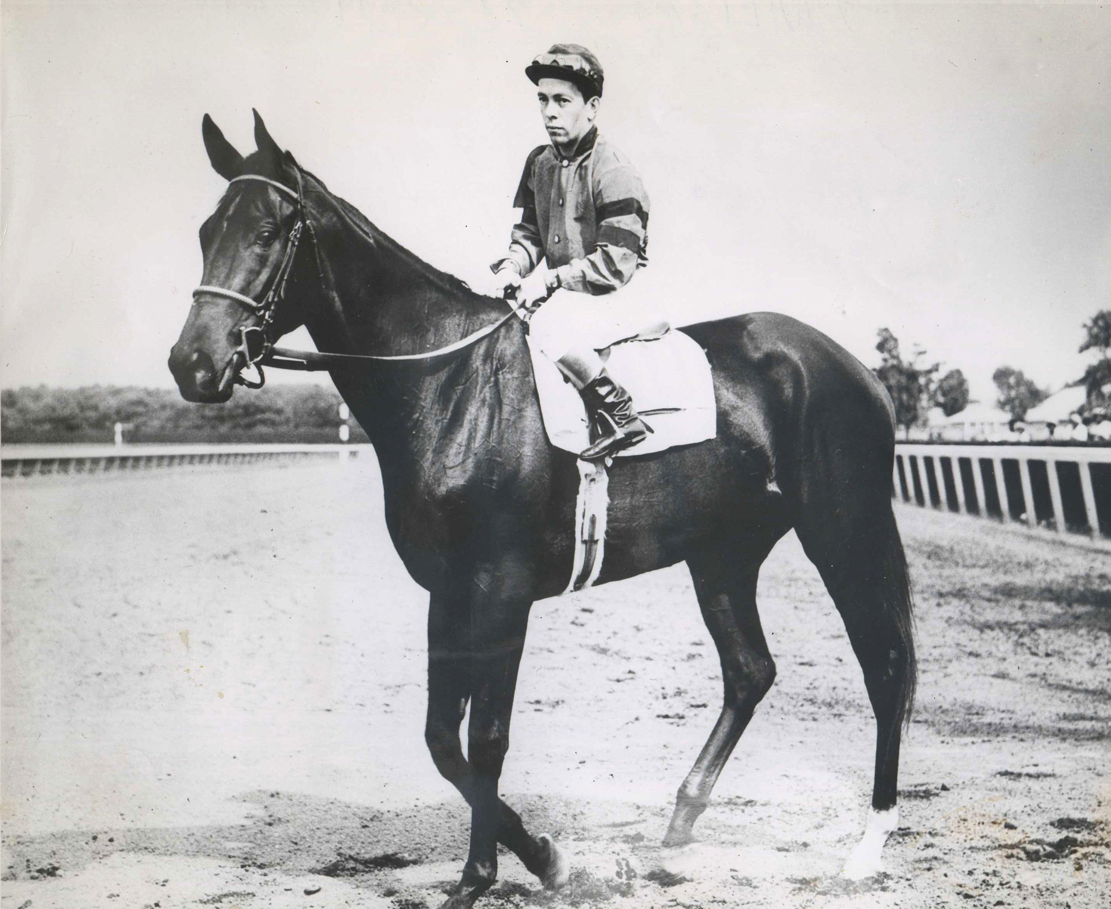Twilight Tear with Conn McCreary up (Museum Collection)