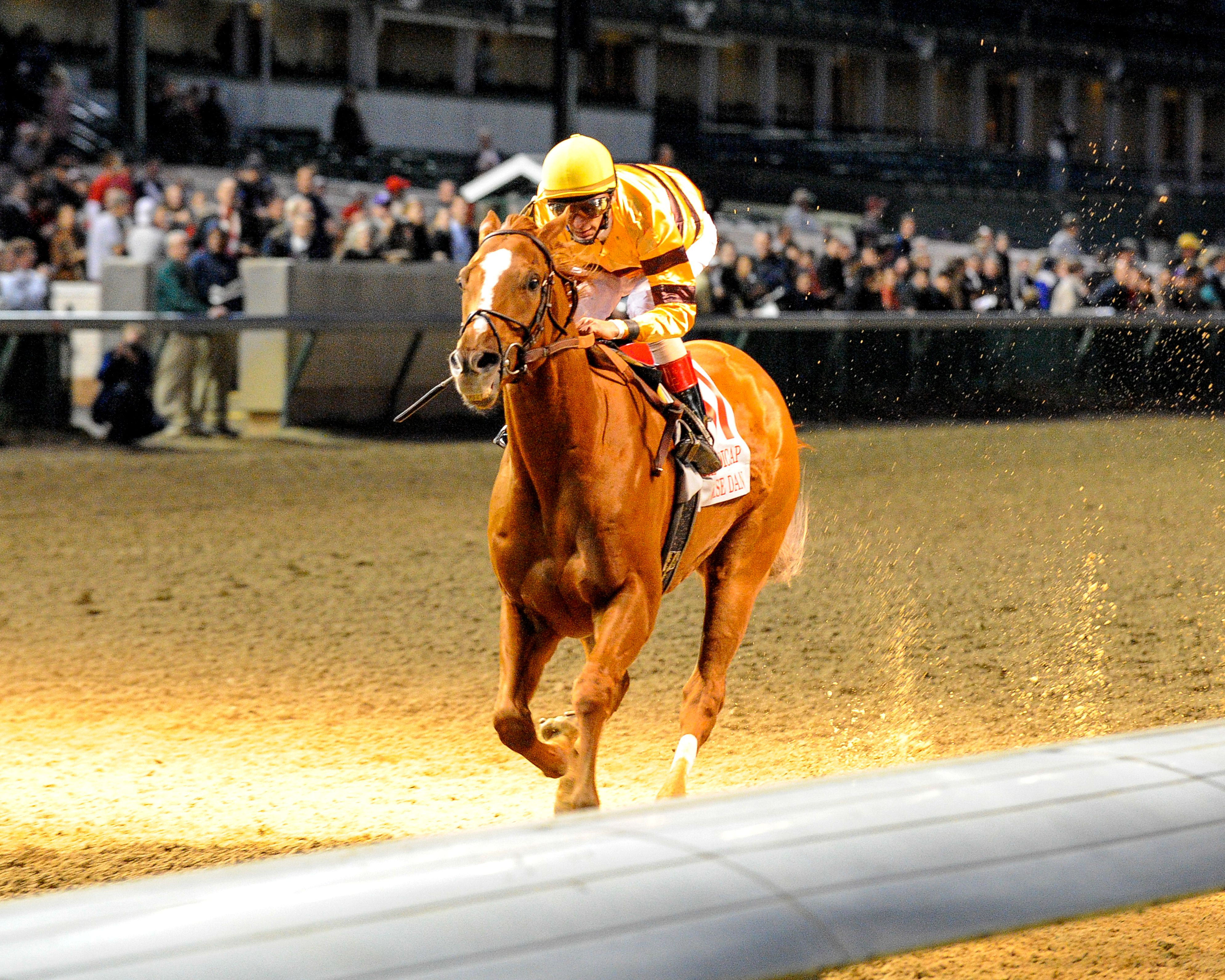 Wise Dan (John Velazquez up) winning the 2011 Clark Handicap at Churchill Downs, his first Grade 1 victory (Bob Mayberger)