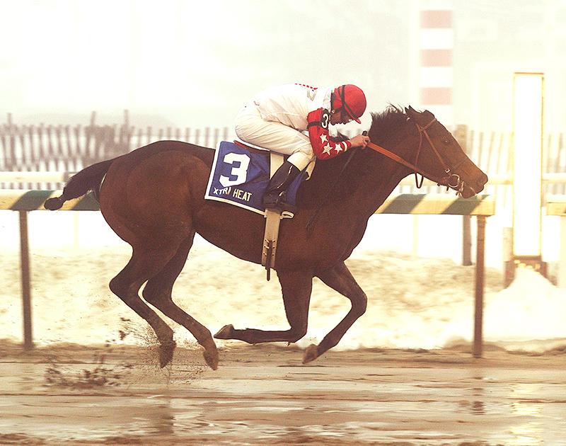 Xtra Heat (Maryland Jockey Club)