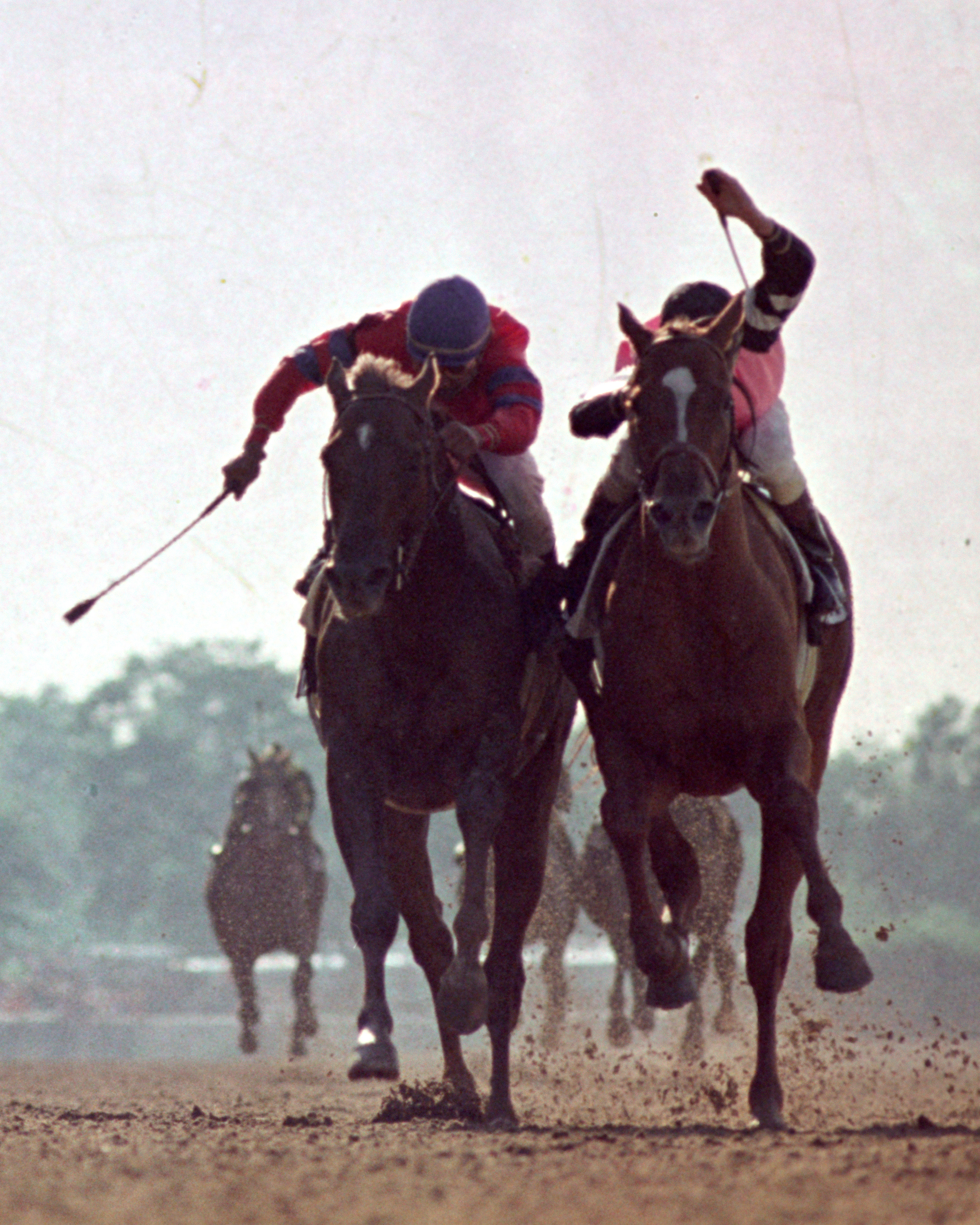Affirmed (Steve Cauthen up) dueling Alydar (Jorge Velasquez up) for the win in the 1978 Belmont Stakes, becoming the 11th Triple Crown winner in history (NYRA/Bob Coglianese /Museum Collection)