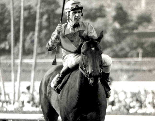 Bold 'n Determined (Eddie Delahoussaye up) on the track for the 1980 Pasadena Stakes at Santa Anita (Bill Mochon/Museum Collection)