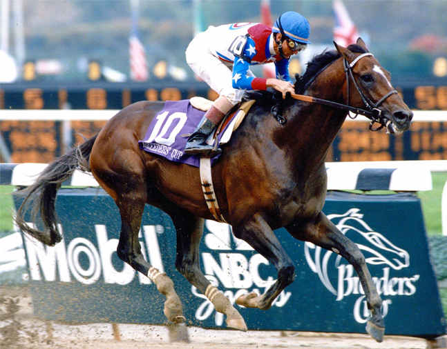 Cigar (Jerry Bailey up) winning the 1995 Breeders' Cup Classic at Belmont Park (NYRA/Museum Collection)