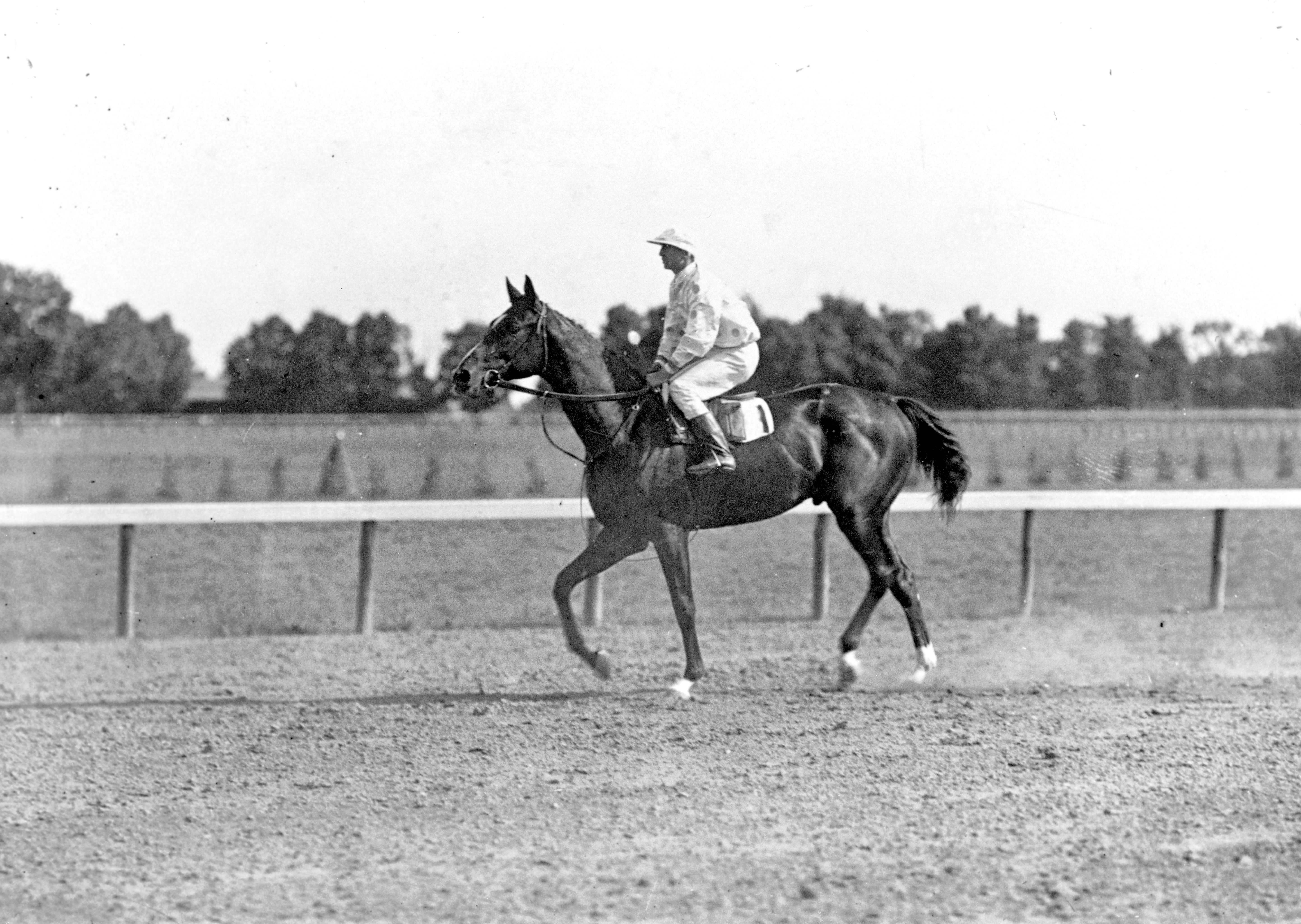 Colin with Walter Miller up (Keeneland Library Cook Collection/Museum Collection)