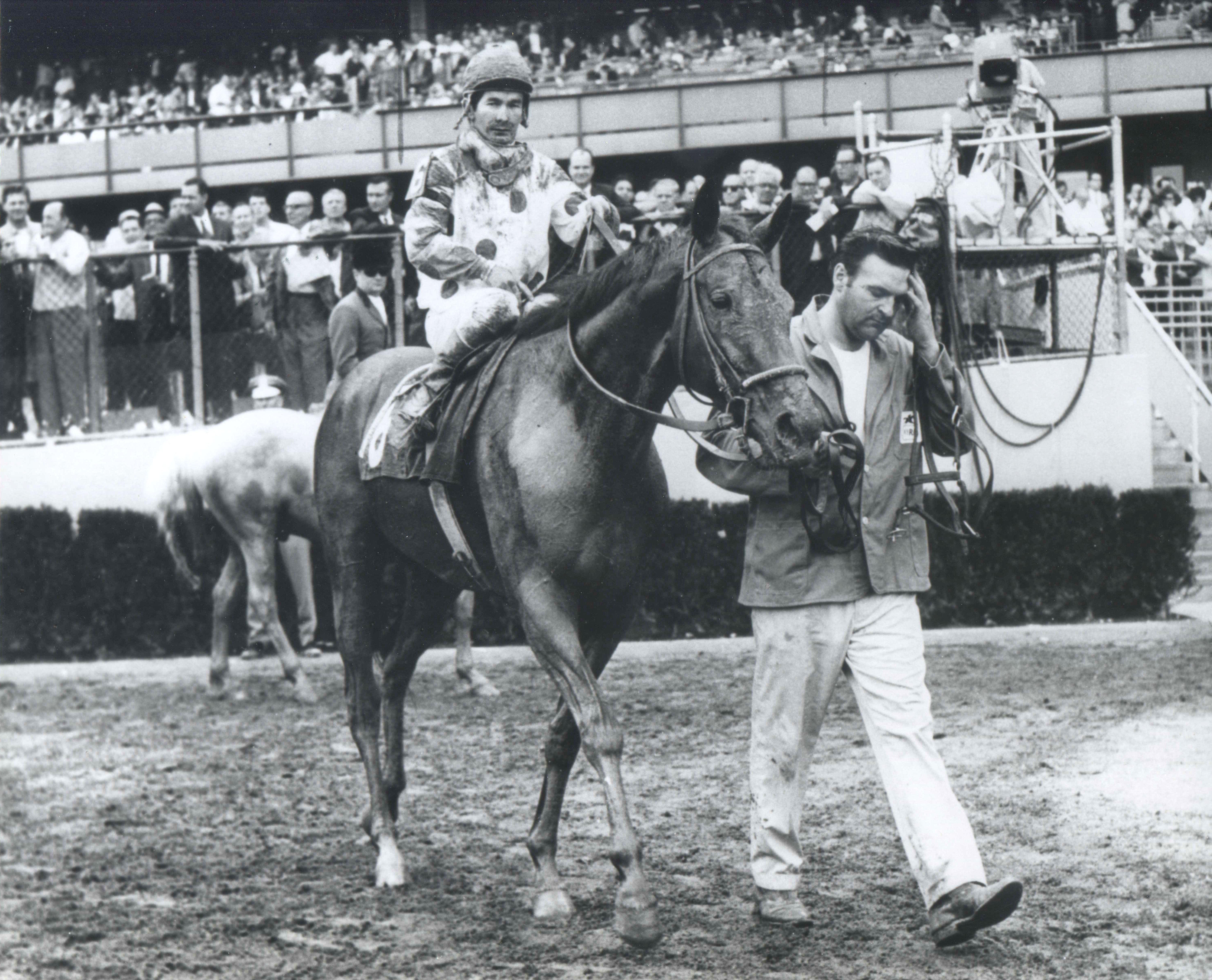 Damascus with Bill Shoemaker up (The BloodHorse)
