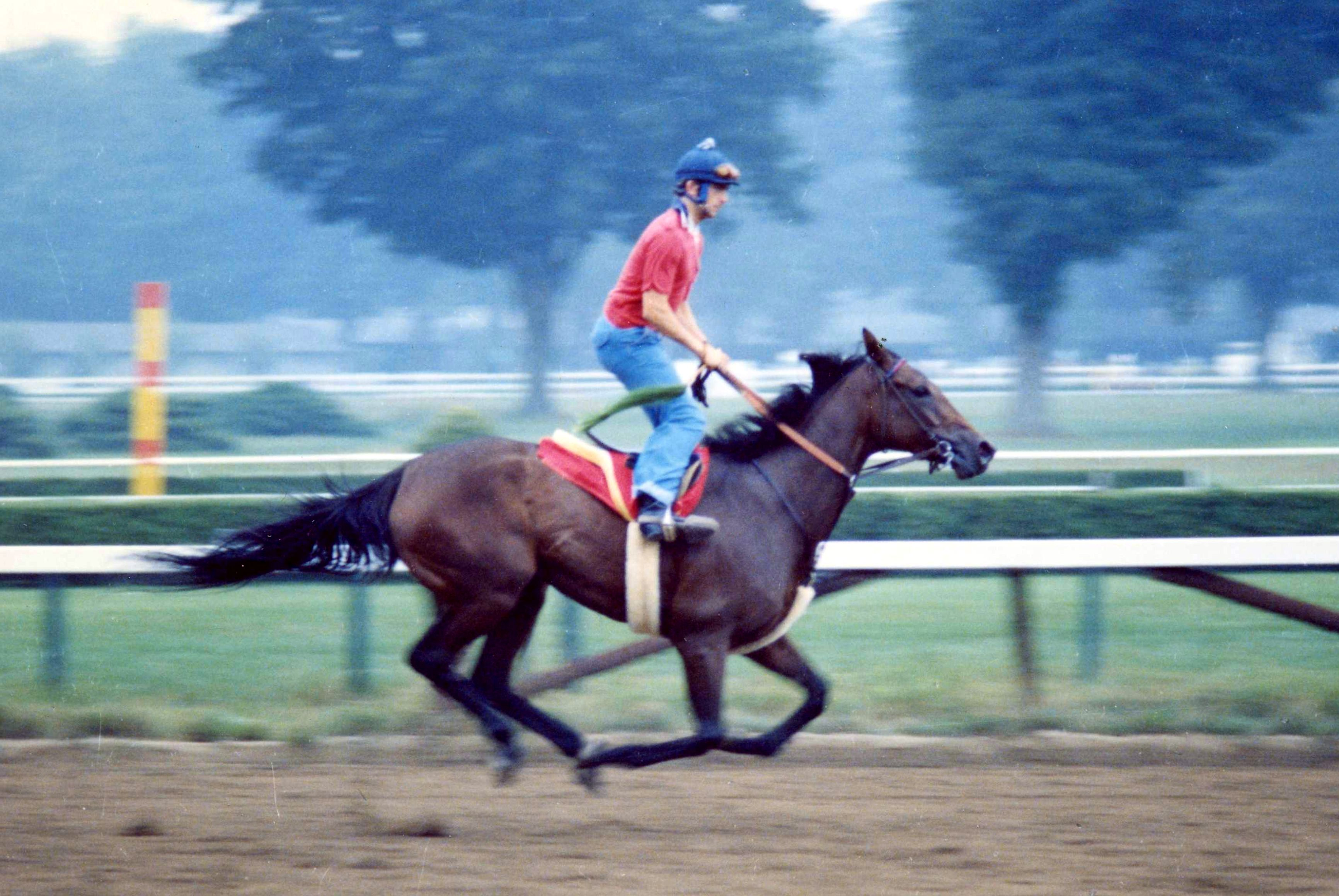 Davona Dale breezing at Saratoga Race Course, 1978 (Barbara D. Livingston/Museum Collection)