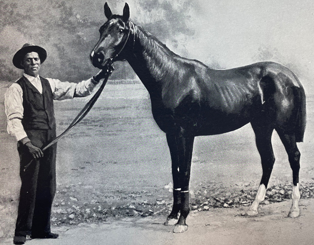 "Domino, from ""Racing in America, 1866-1921"" (Museum Collection)"