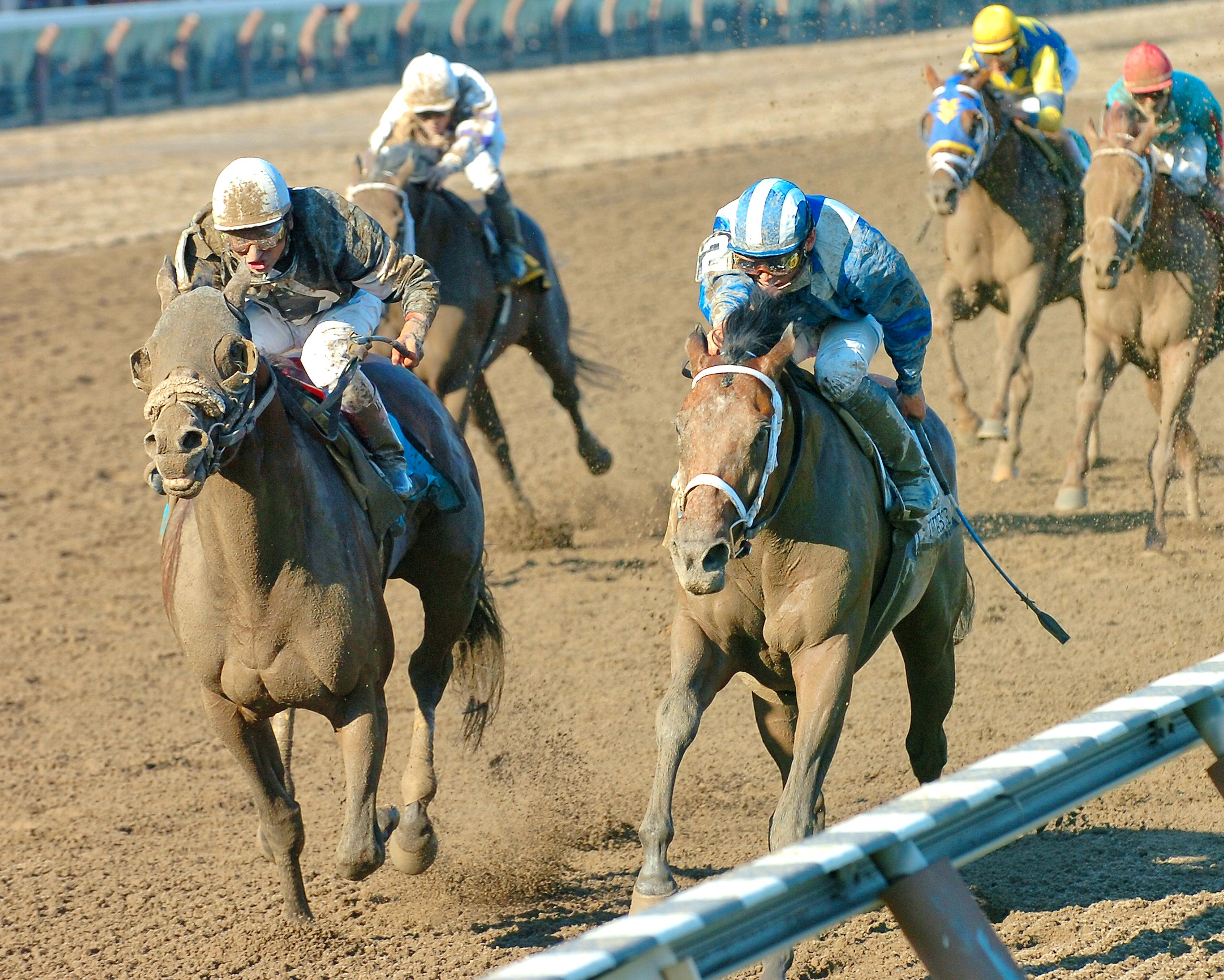 Invasor, Fernando Jara up, winning the 2006 Whitney Handicap (NYRA)